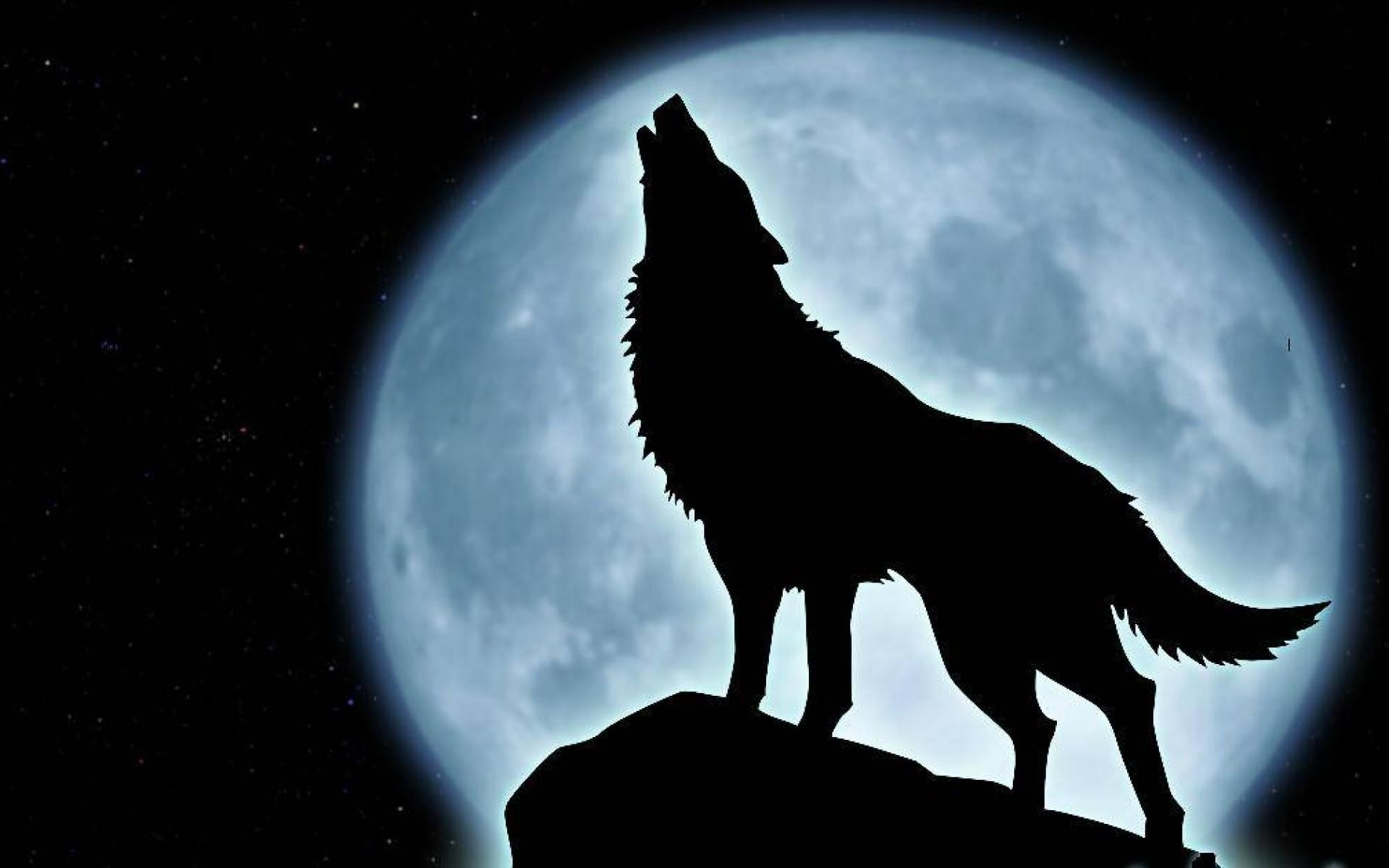 1920x1200 pin Drawn howling wolf wallpaper #4