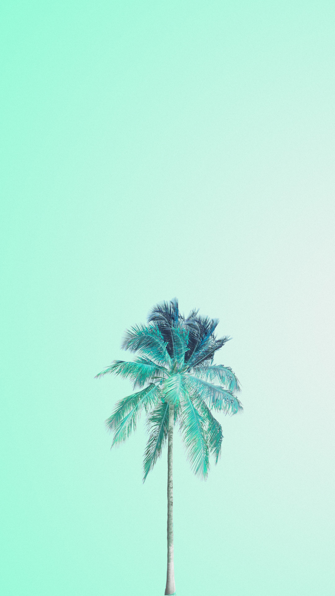 1080x1920 Mint green palm tree iphone wallpaper phone background lock screen