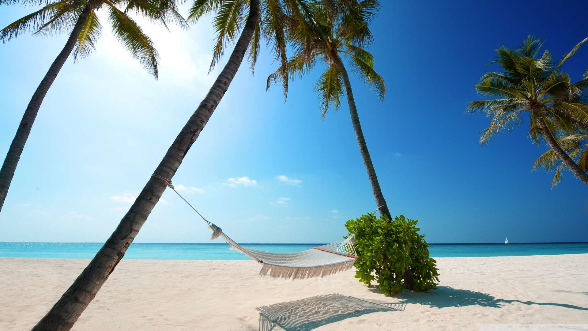 1920x1080 Wallpaper: Hammock On Tropical Beach Wallpaper 1080p HD. Upload at .