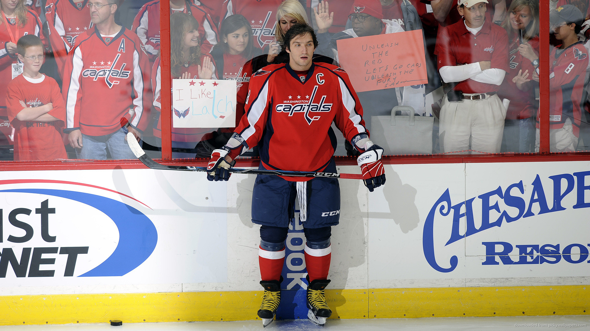 1920x1080 Alexander Ovechkin Washington Capitals Captain picture