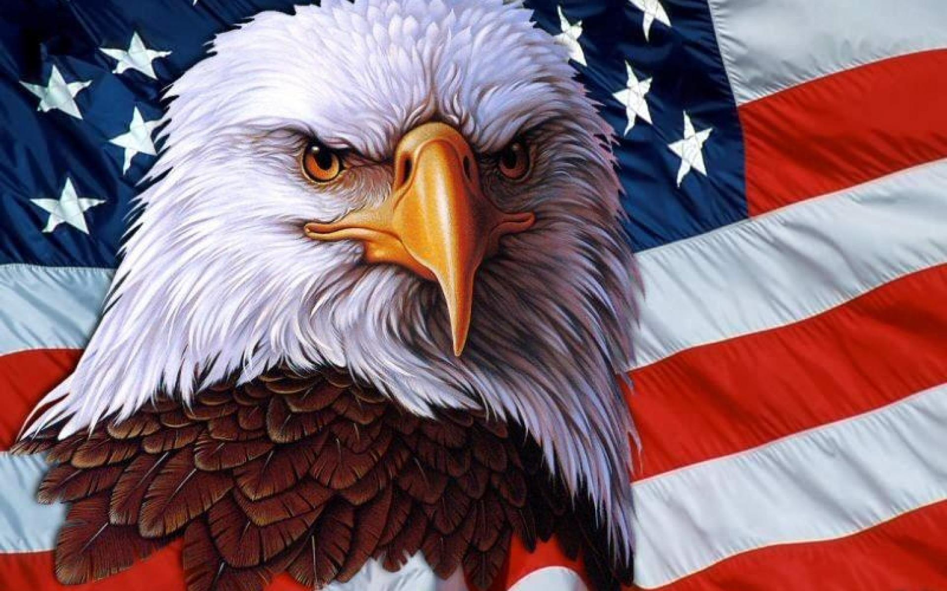 AMERICAN EAGLE | AE Fleece Crew Neck Sweatshirt Nude | notos