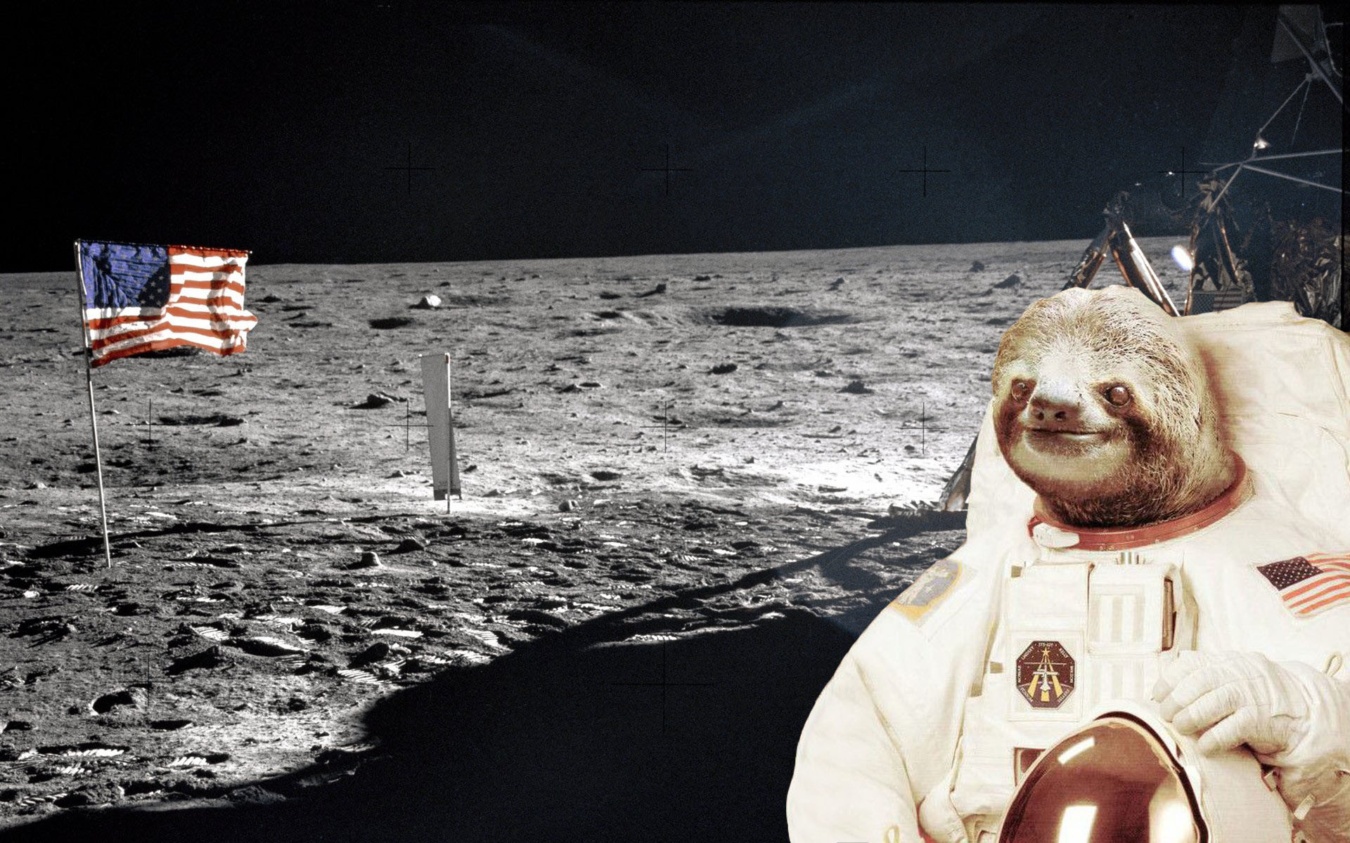 1920x1200 I took the classic space sloth and made it more appropriate for  independence day.