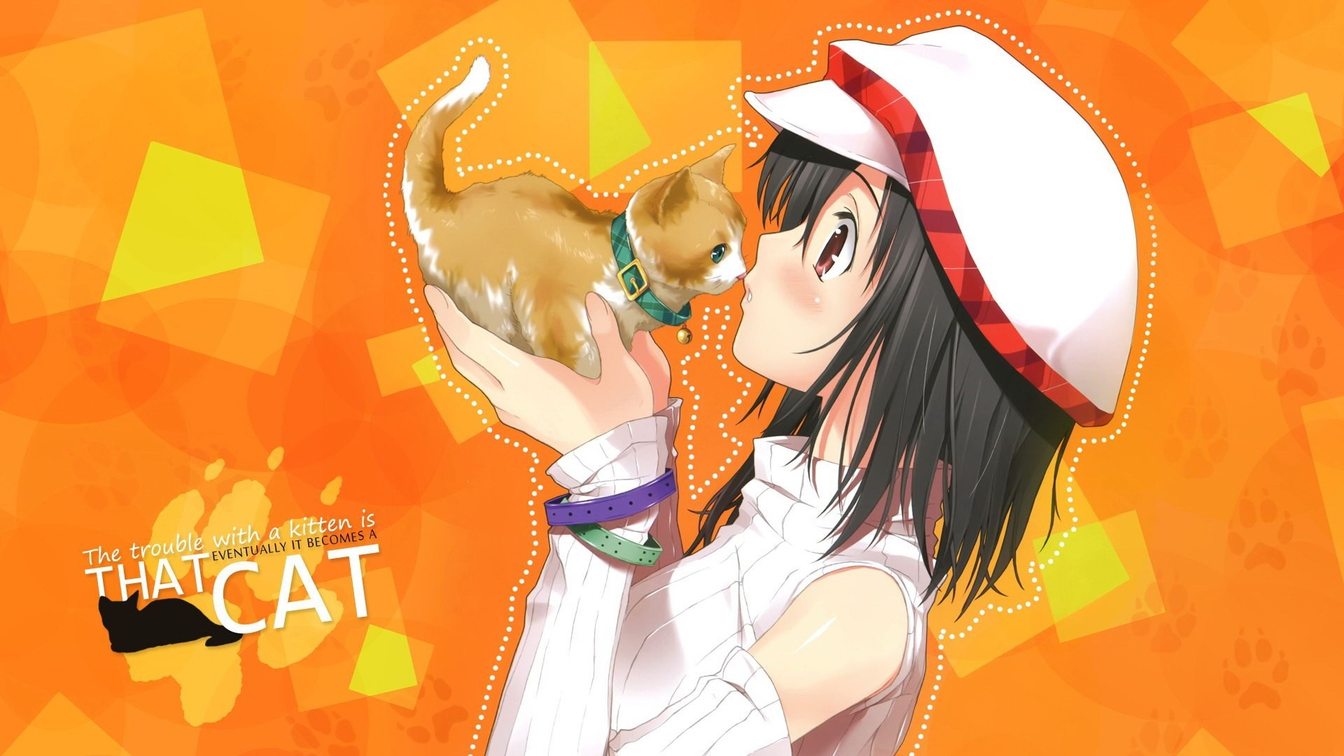 1920x1080 Anime Girl With Cat 817118 ...
