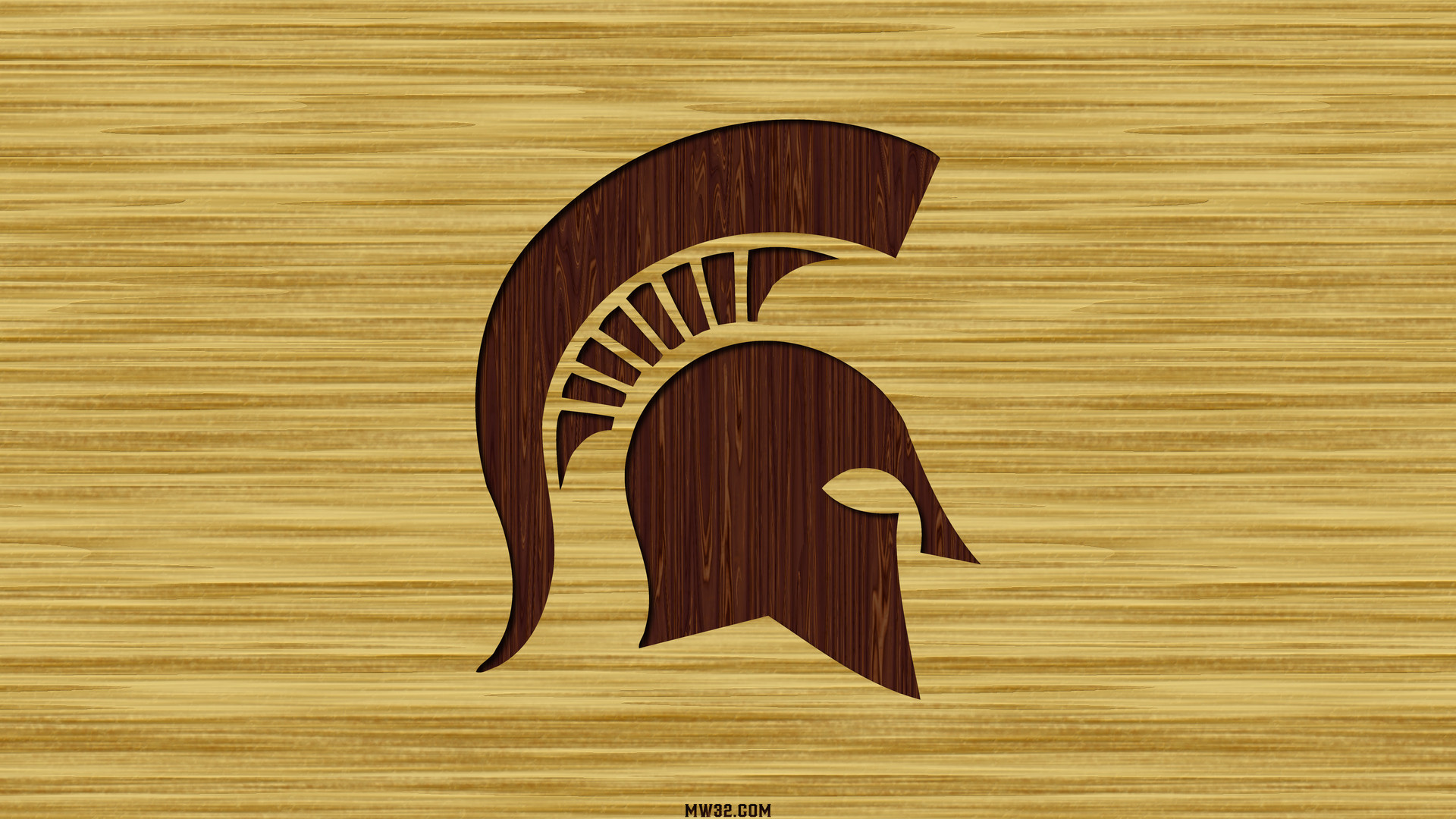 1920x1080 Michigan State Basketball Court Wallpaper Images & Pictures - Becuo