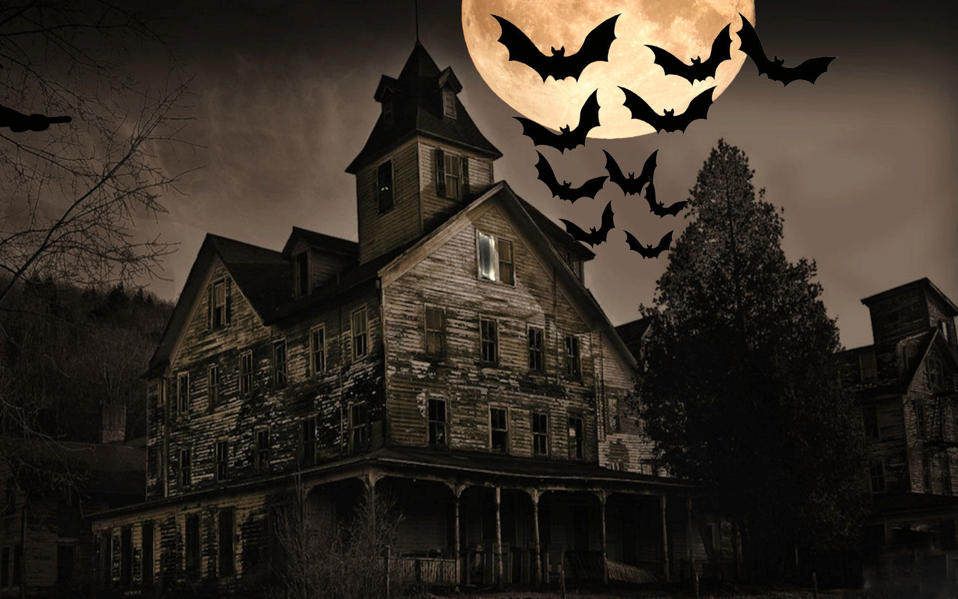 1920x1200  Scary-Halloween-2012-Wide-Screen-HD-Wallpaper