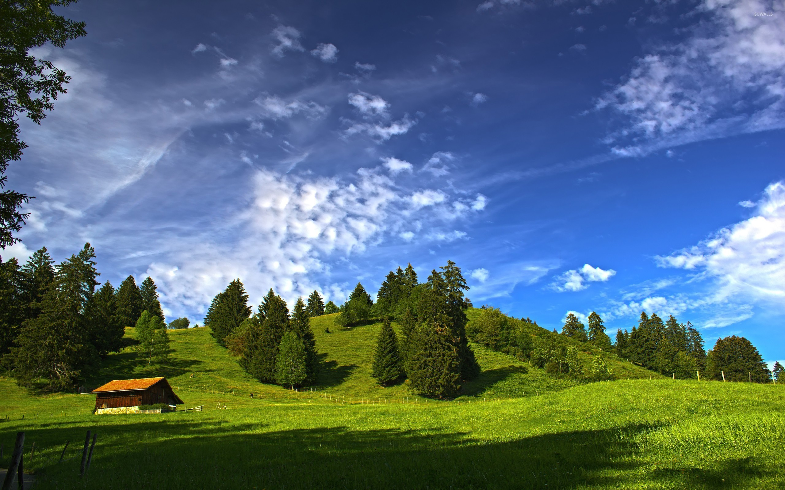 Sunny Day Background (38+ images)