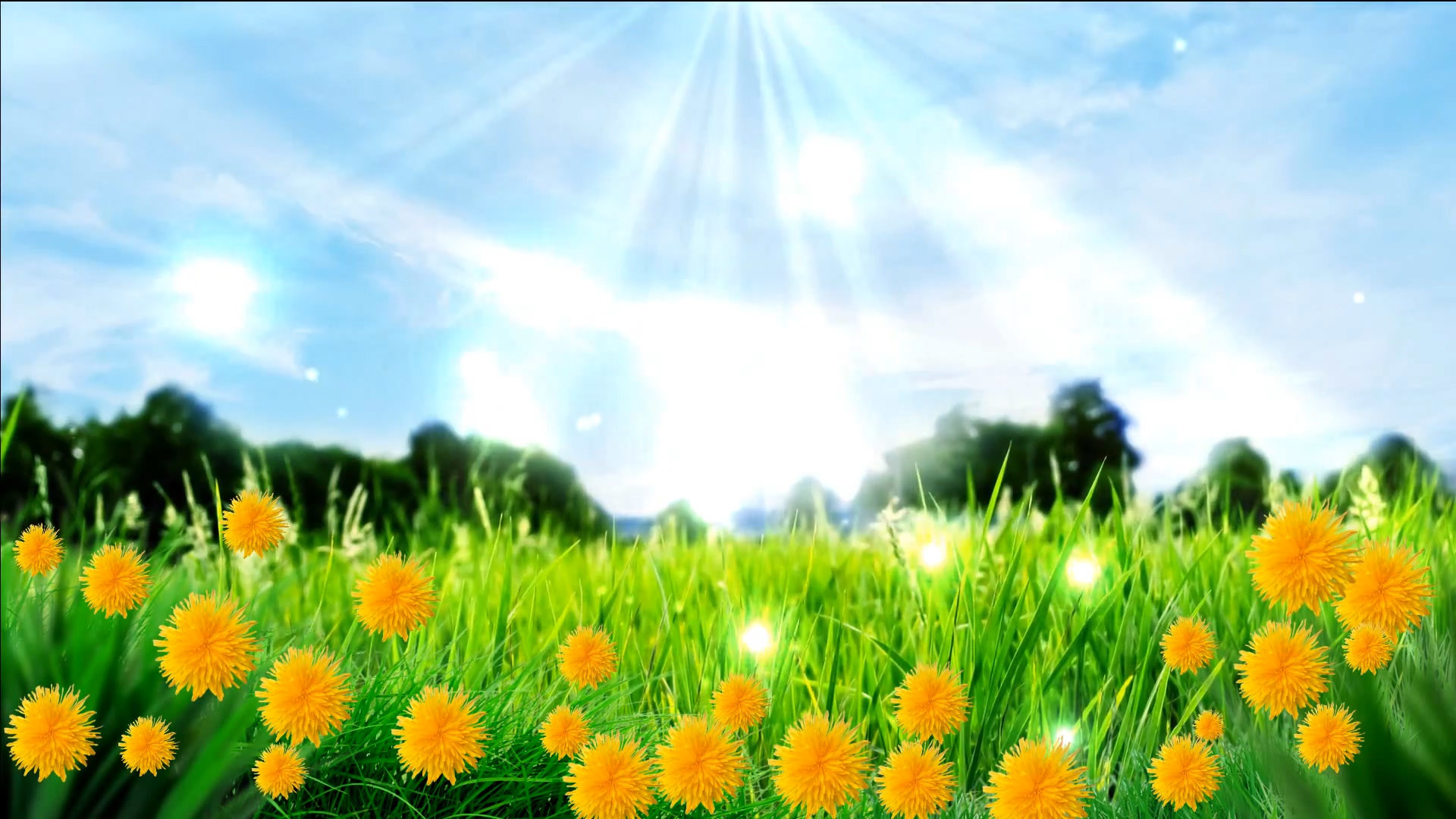 spring meadow wallpaper  63  images
