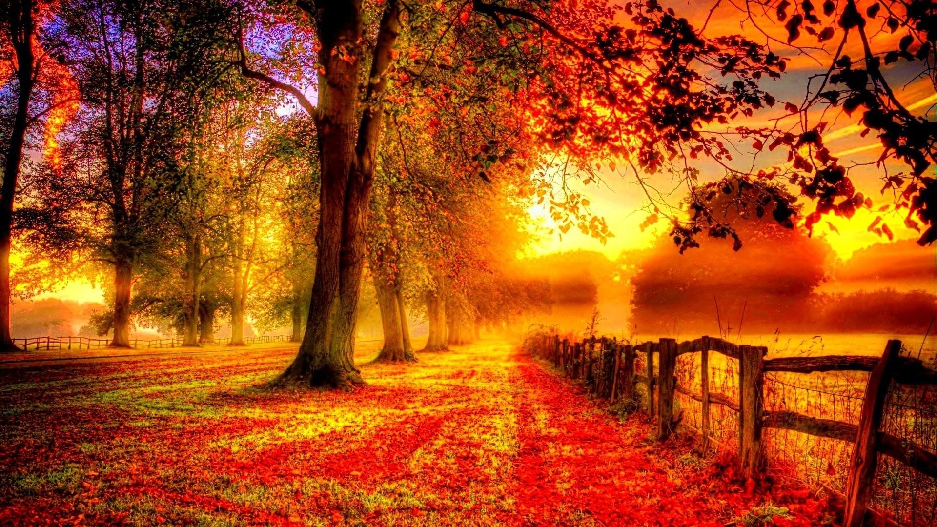 autumn season - photo #37