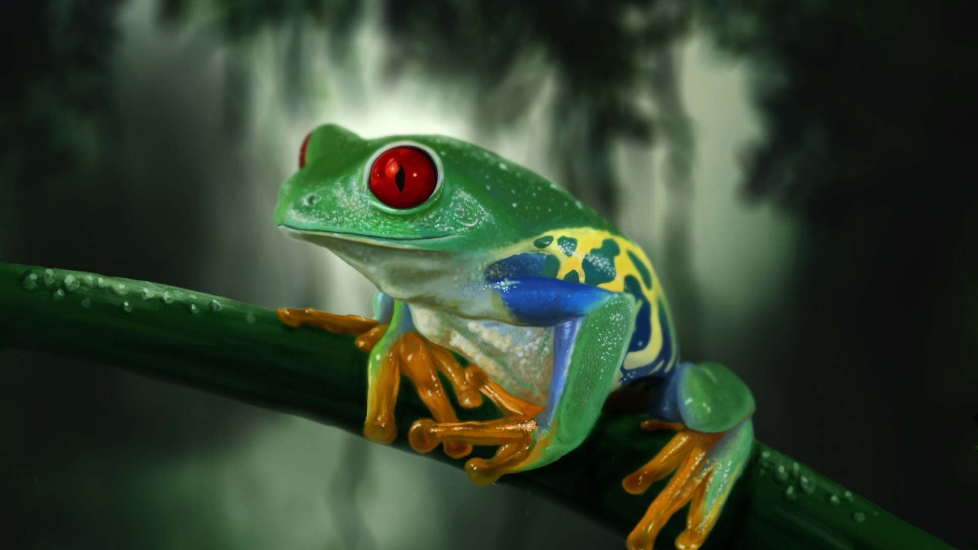 Tree Frog Wallpaper (64+ Images