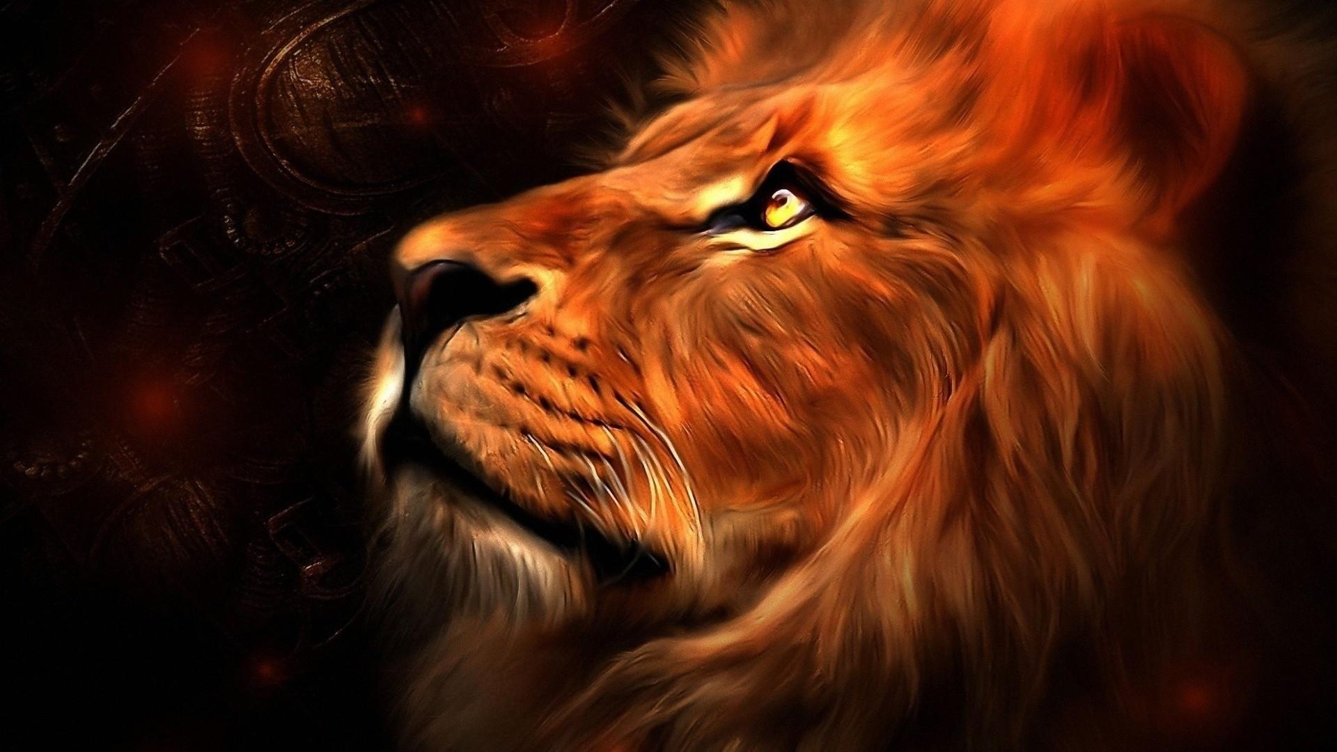 Colorful Lion Wallpaper 57 Images