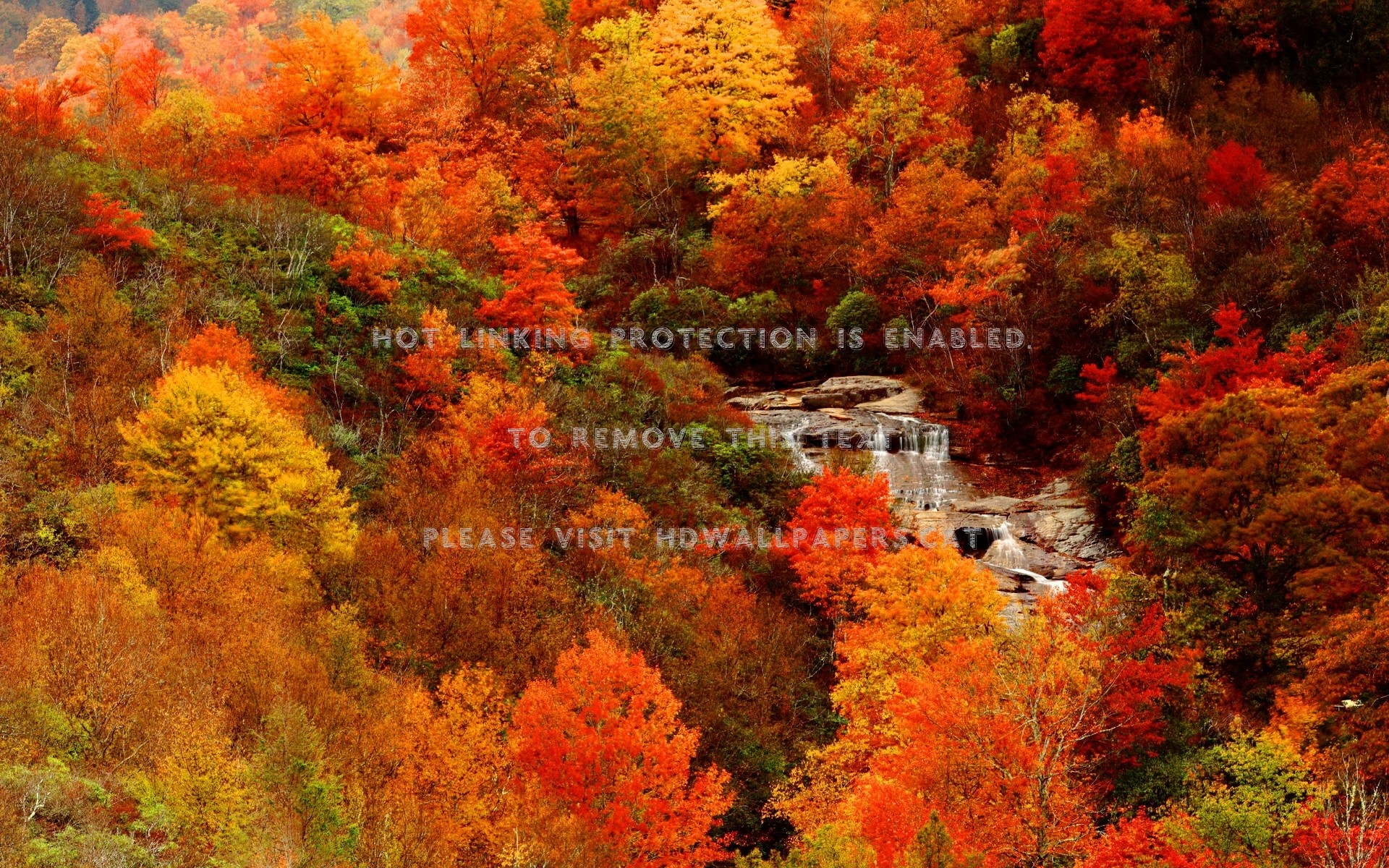 Autumn Waterfall Wallpaper 57 Images