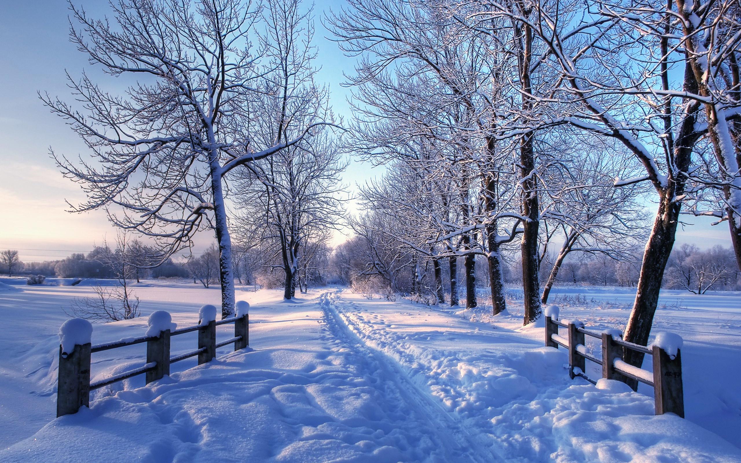 Winter Pictures for Desktop Background (69+ images)