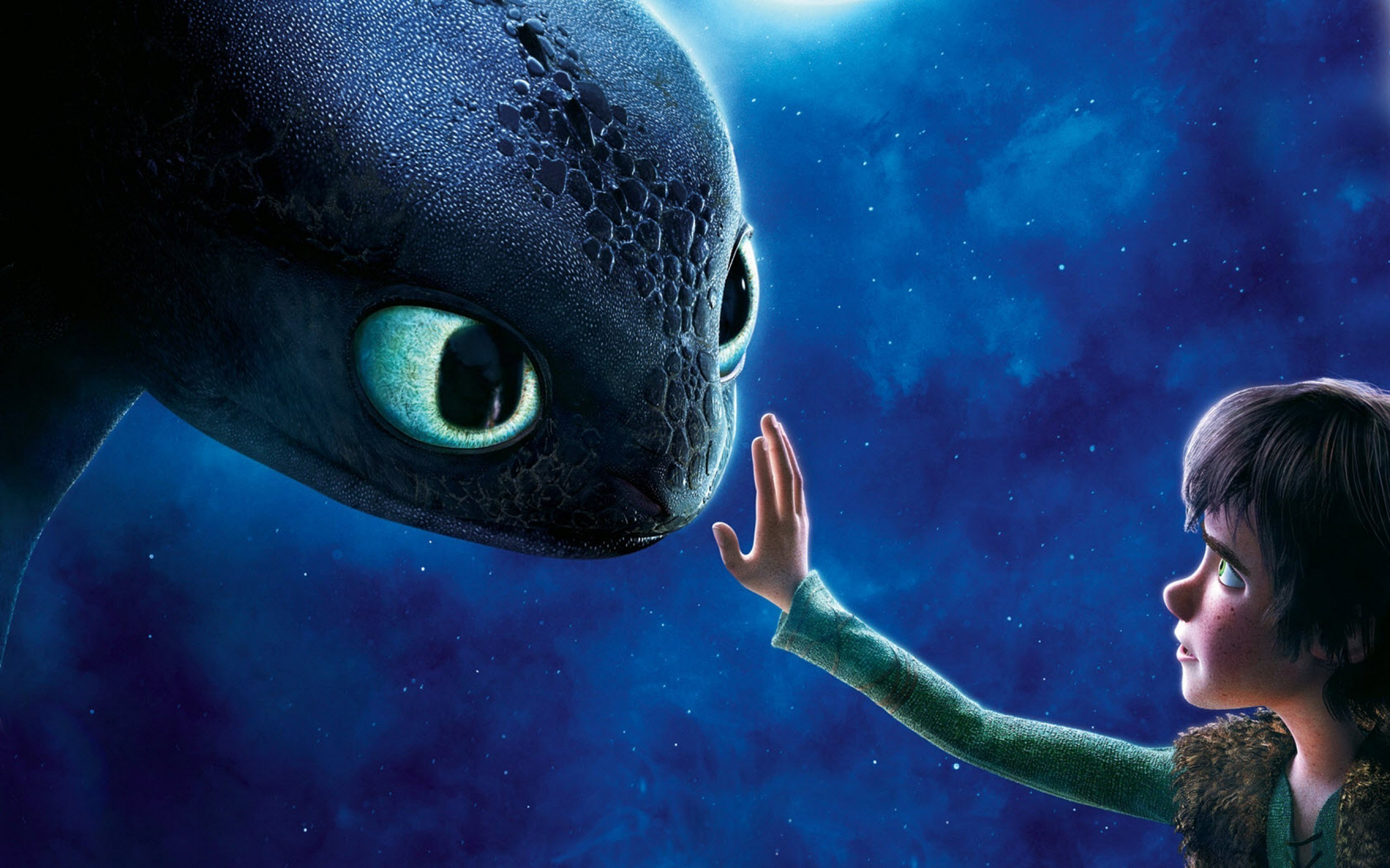 Toothless Wallpaper Hd 75 Images