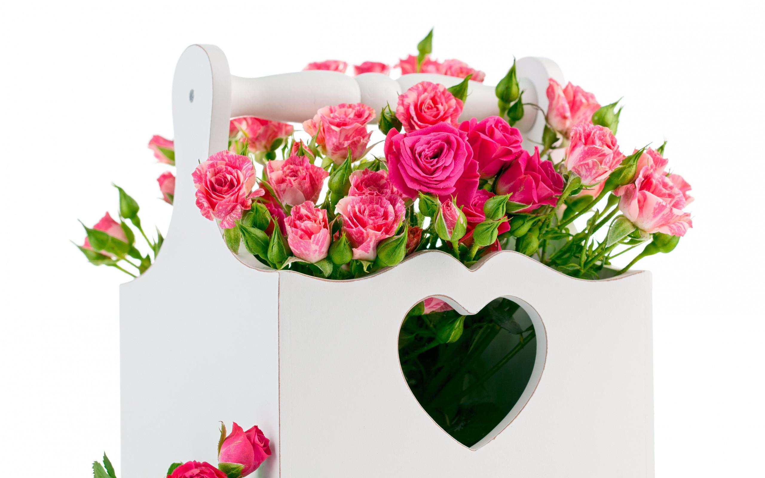 Roses Screensaver Wallpaper (45+ images)