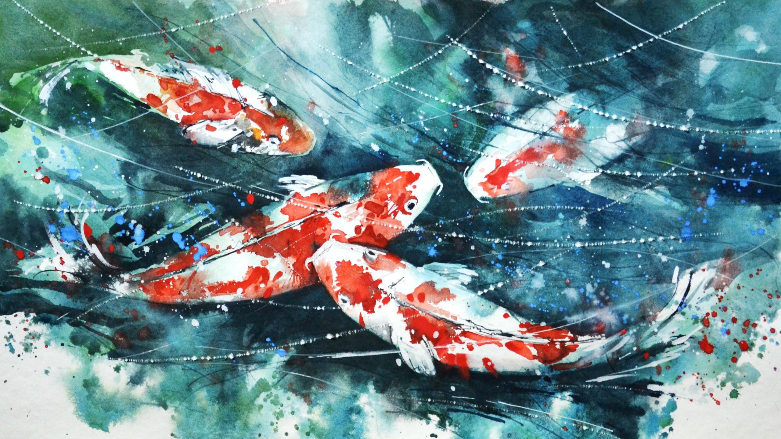 Hd koi fish wallpaper 54 images - Carp wallpaper iphone ...
