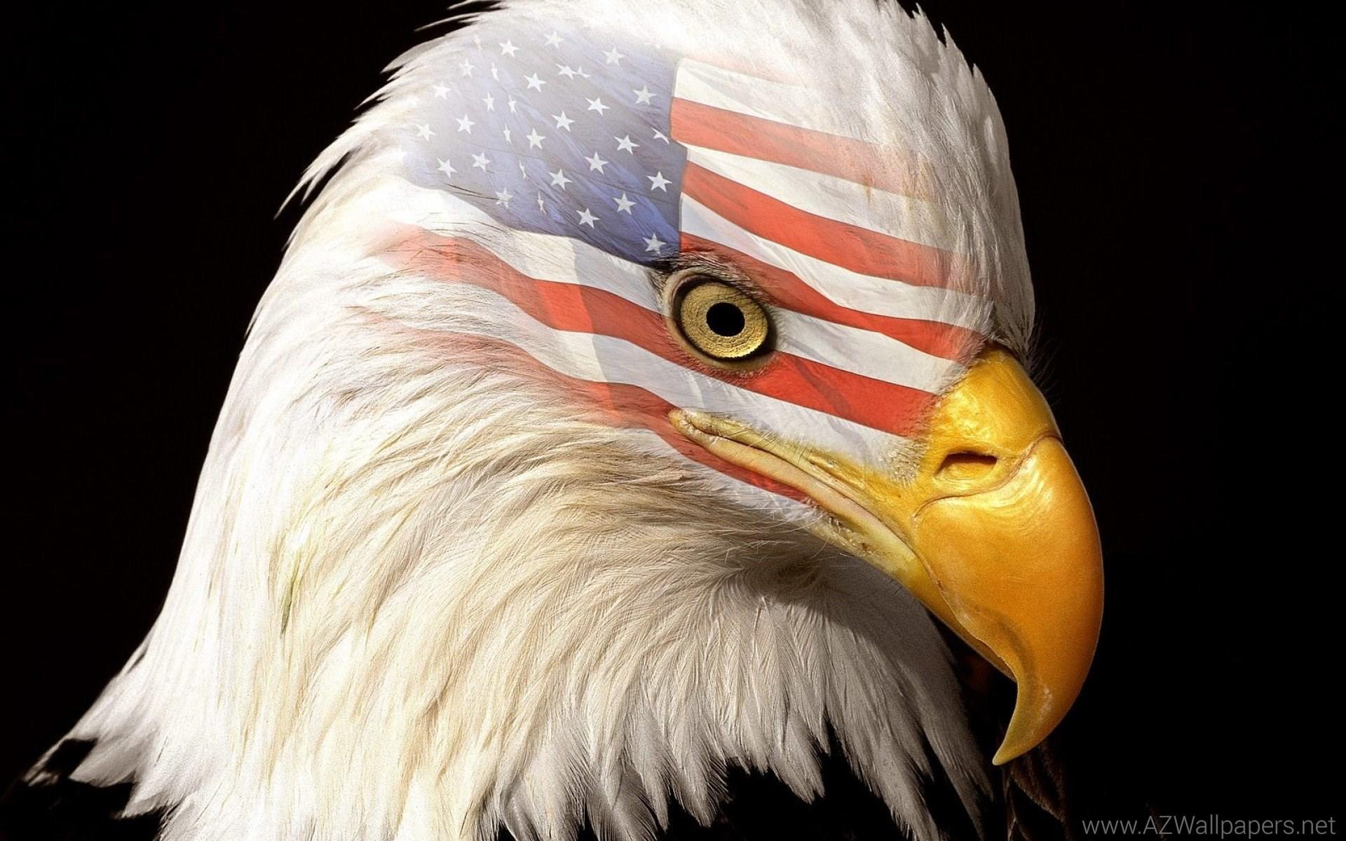 Patriotic Wallpaper Usa Flag Eagle: Patriotic Eagle Wallpapers (61+ Images