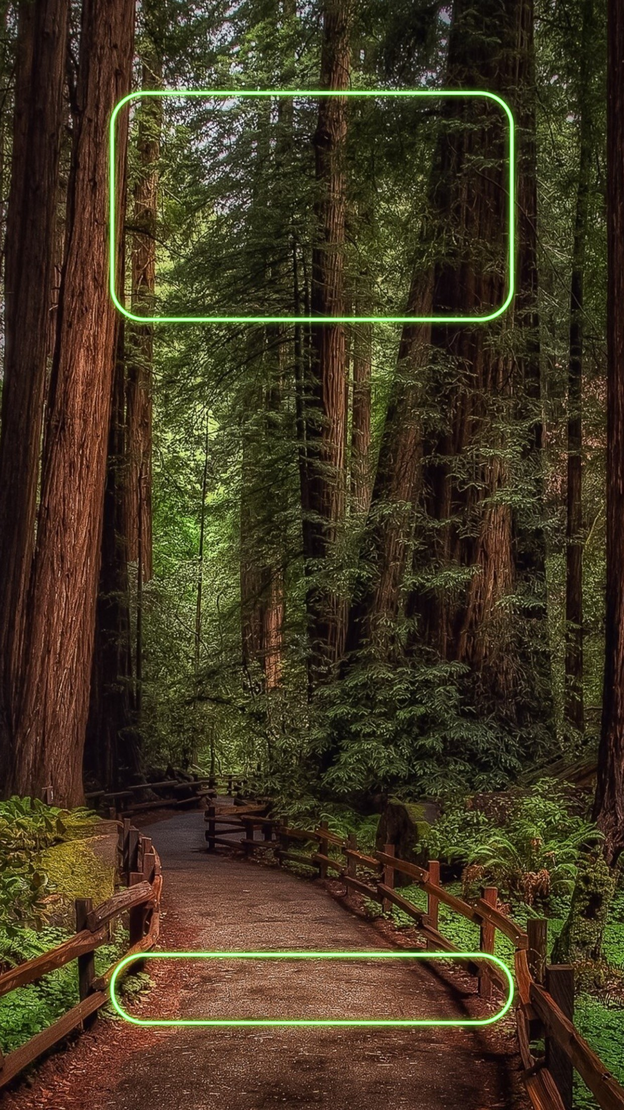 1242x2208 ↑↑TAP AND GET THE FREE APP! Lockscreens Art Creative Nature Forest Green  Path · Iphone BackgroundsPhone ...