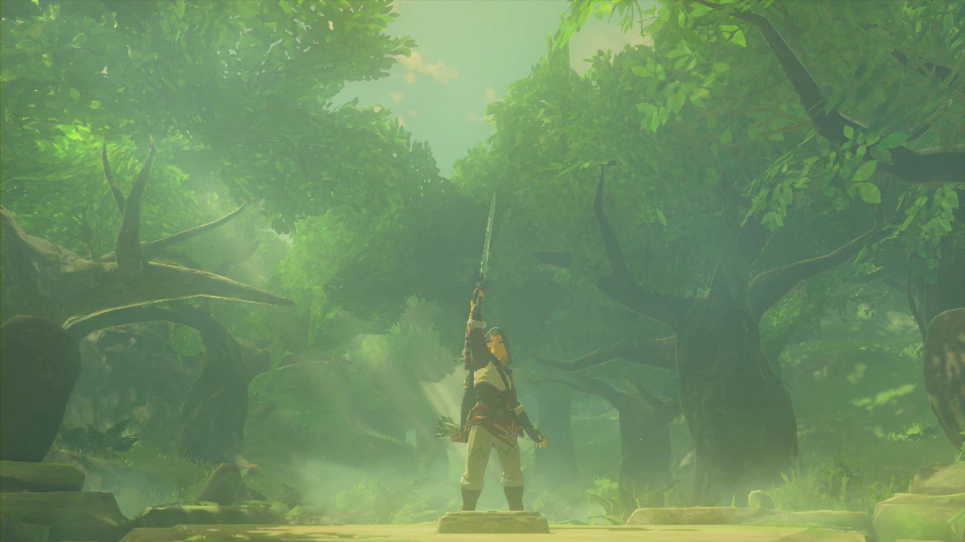 1920x1080 The Legend of Zelda: Breath of the Wild Screenshot Master Sword