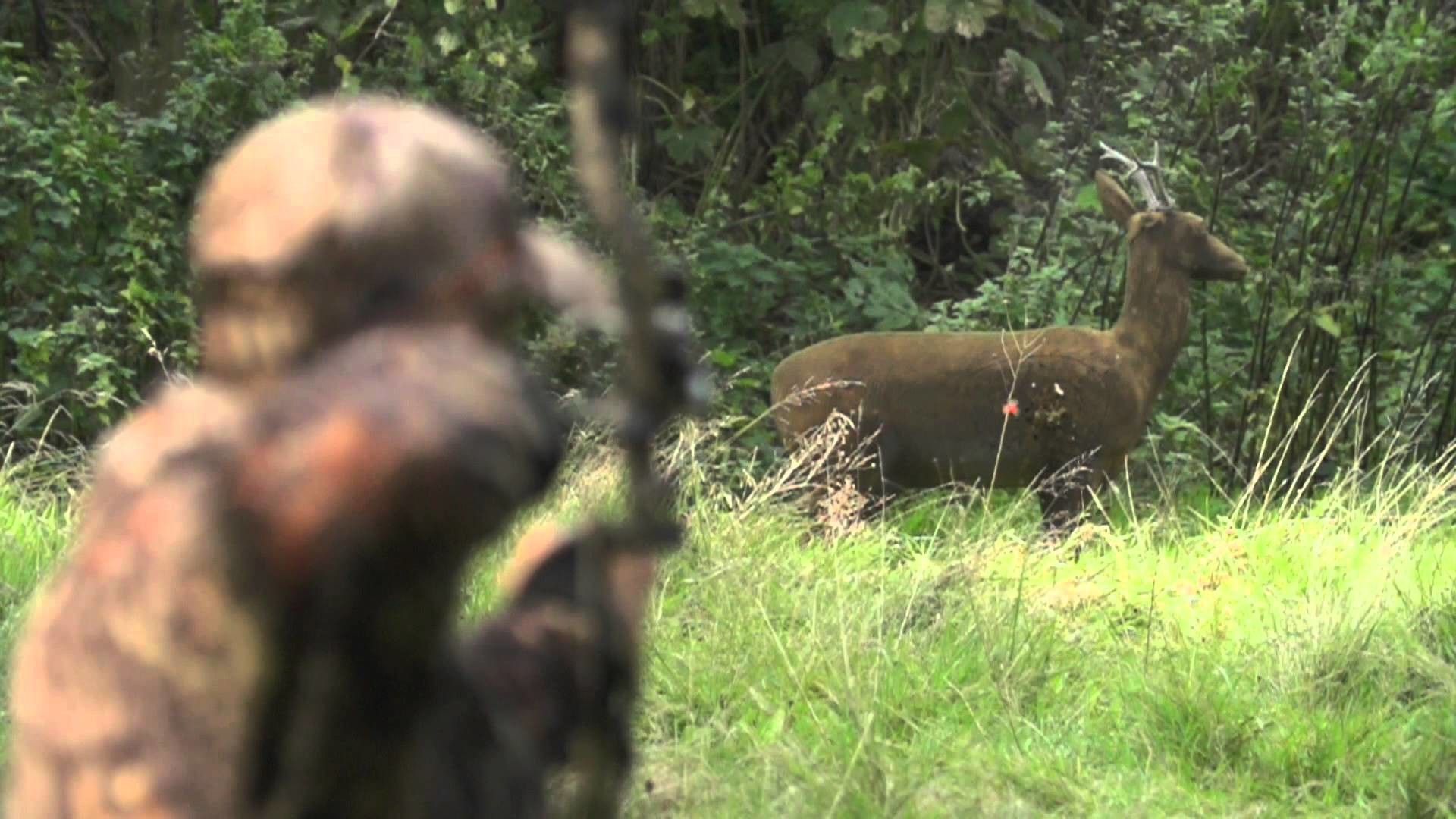 1920x1080 Super slow motion 3D archery, Mathews Chill-R, Monster MR6. Nordica  Outdoors - YouTube