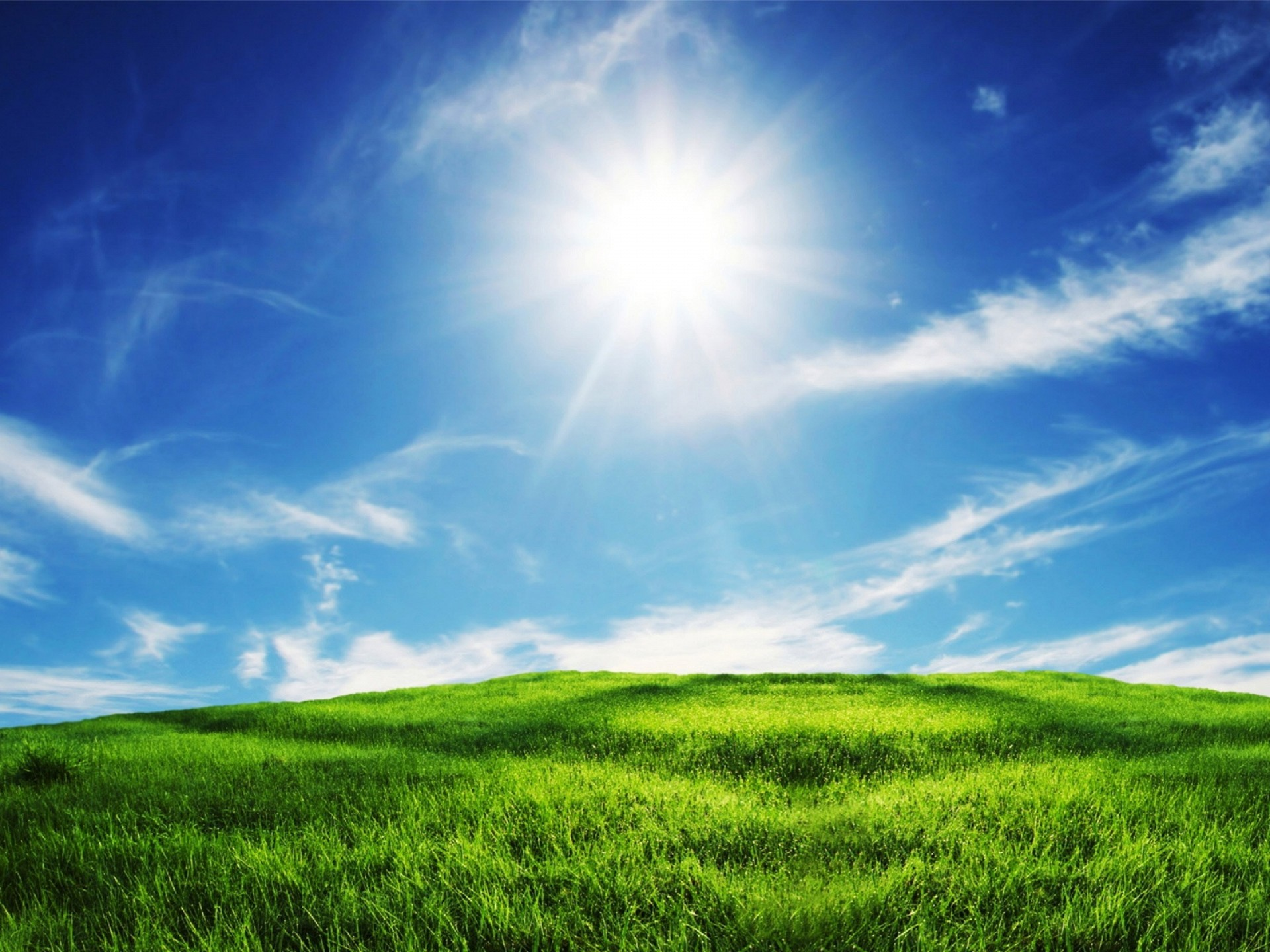 1920x1440 Green Grass And Blue Sky Wallpaper
