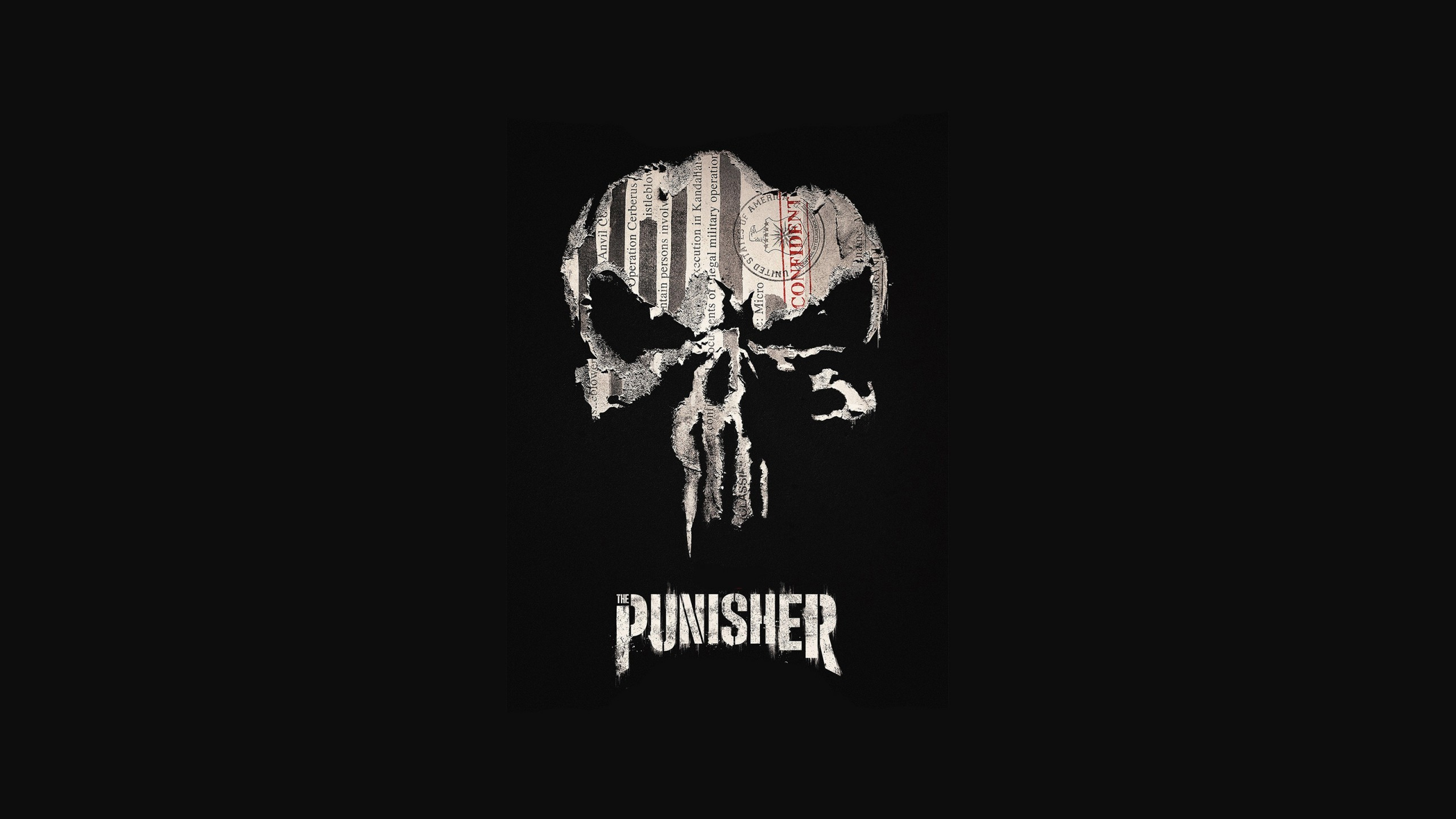 2560x1440 Tags: Punisher ...