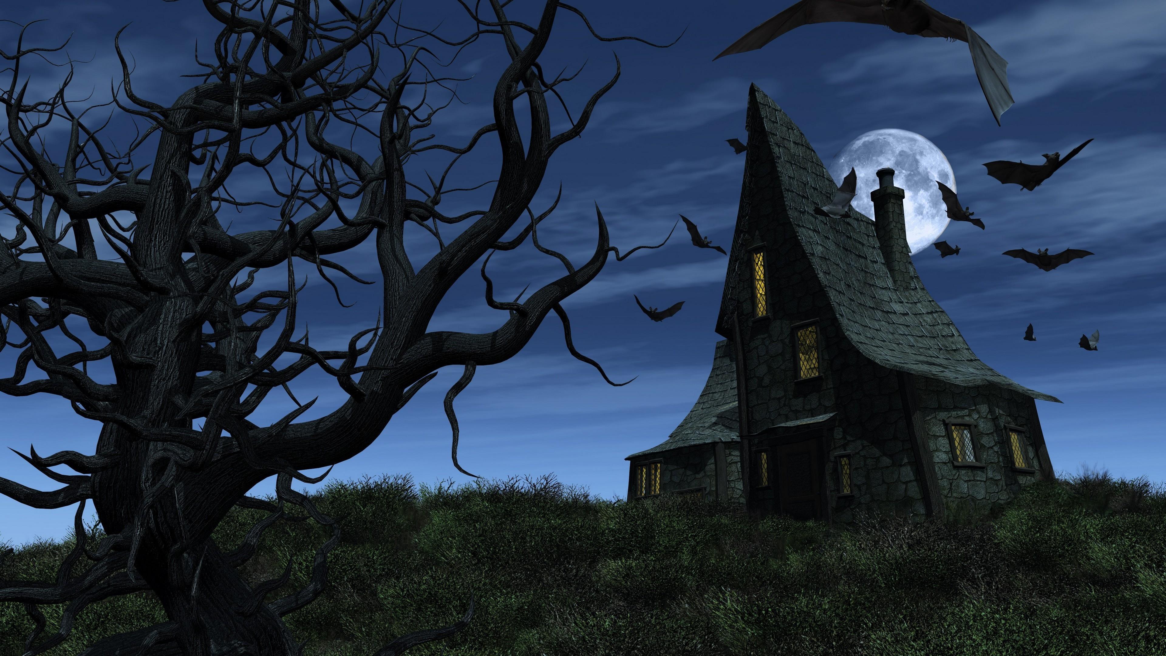Haunted House Background (55+ images)