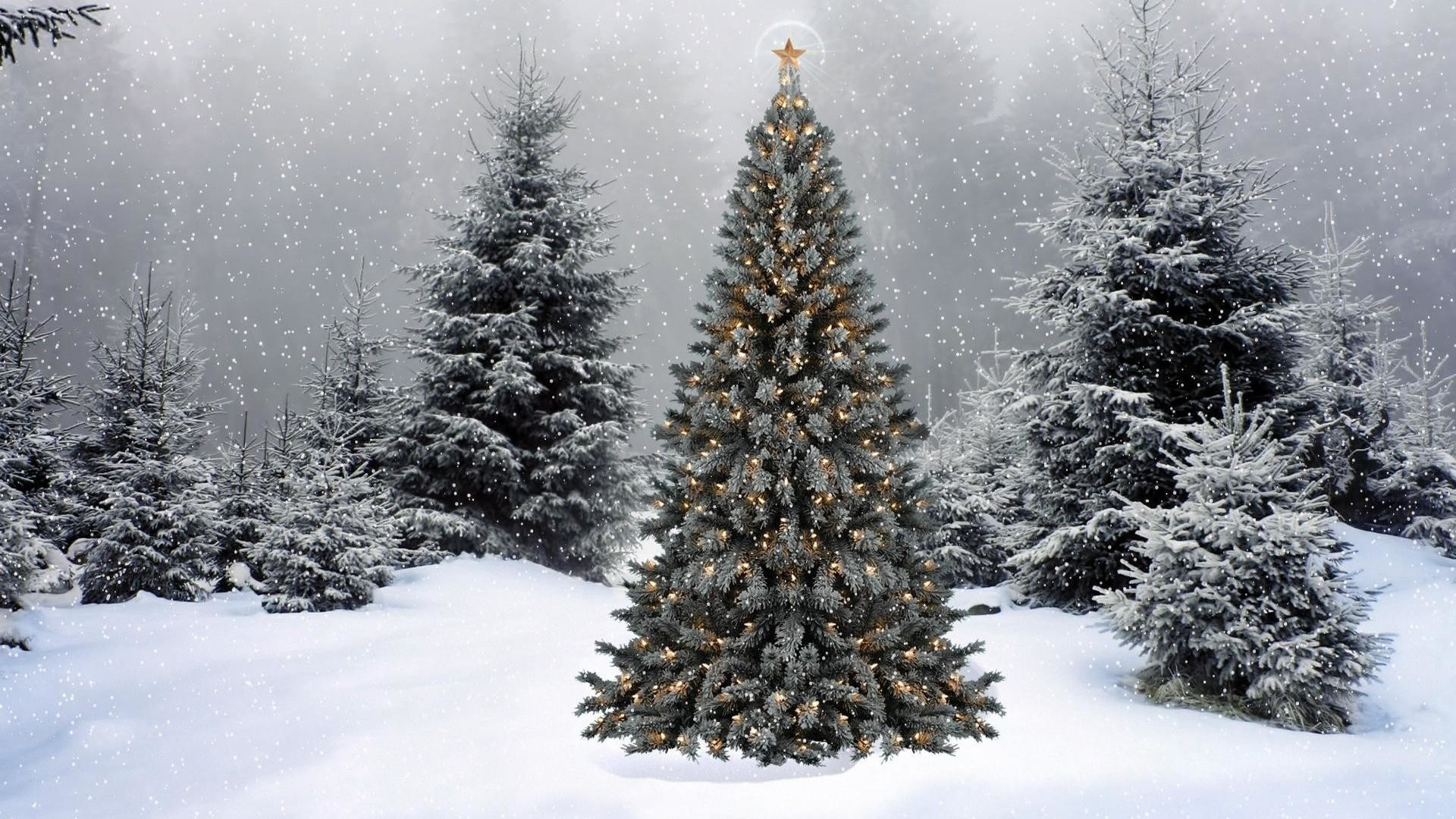 Aesthetic Theme Aesthetic Christmas Wallpapers Desktop ...