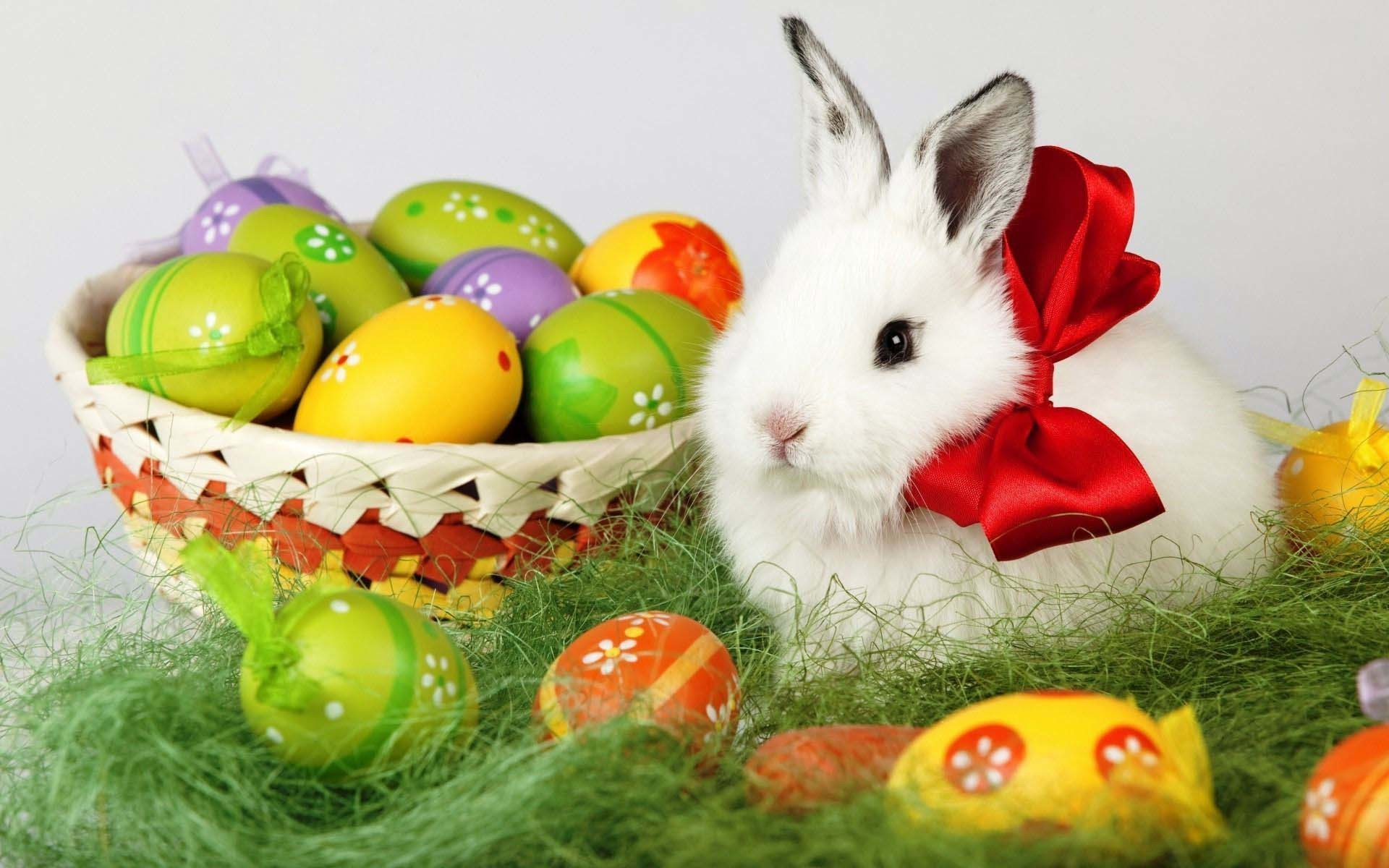 1920x1200 Easter Bunny And Eggs 1920×1200 Holiday Wallpaper | Cool PC Wallpapers
