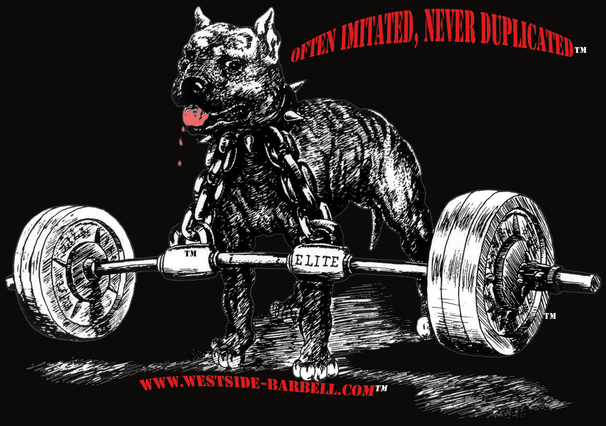 powerlifting wallpaper 53 images