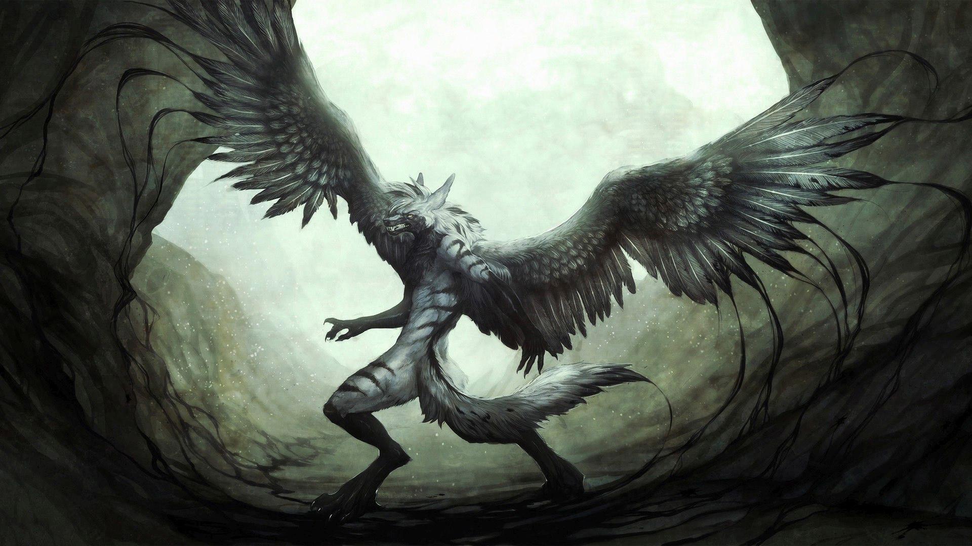Fantasy winged wolf wallpaper