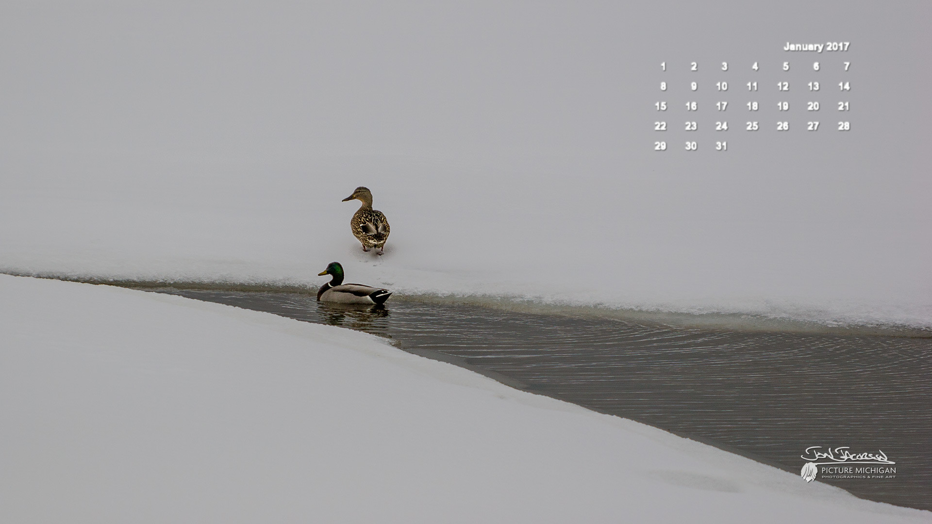 January 2018 Desktop Wallpaper 61 Images