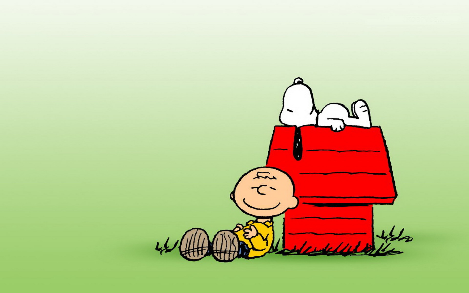 Charlie Brown Desktop Wallpaper (40+