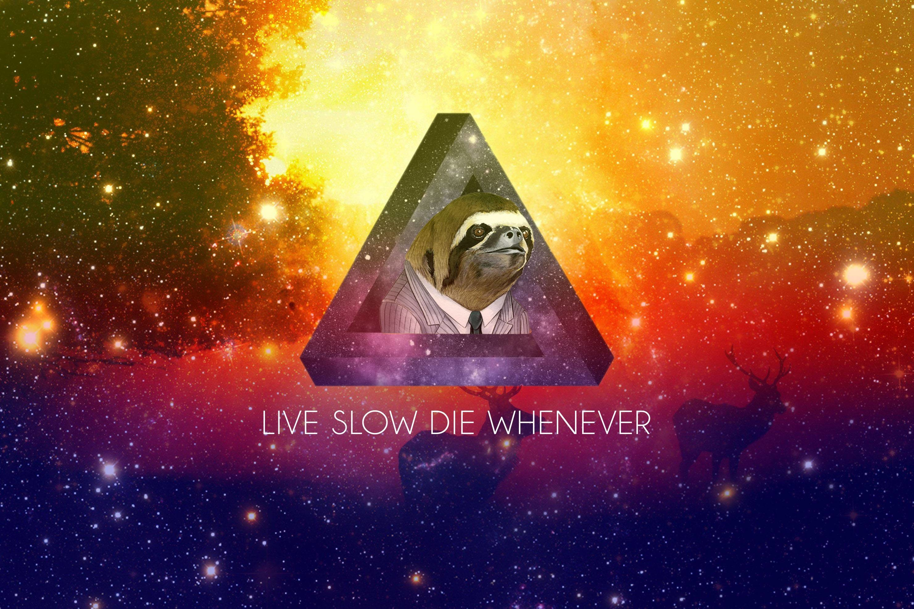 2963x1974 A small collection of Sloth wallpapers