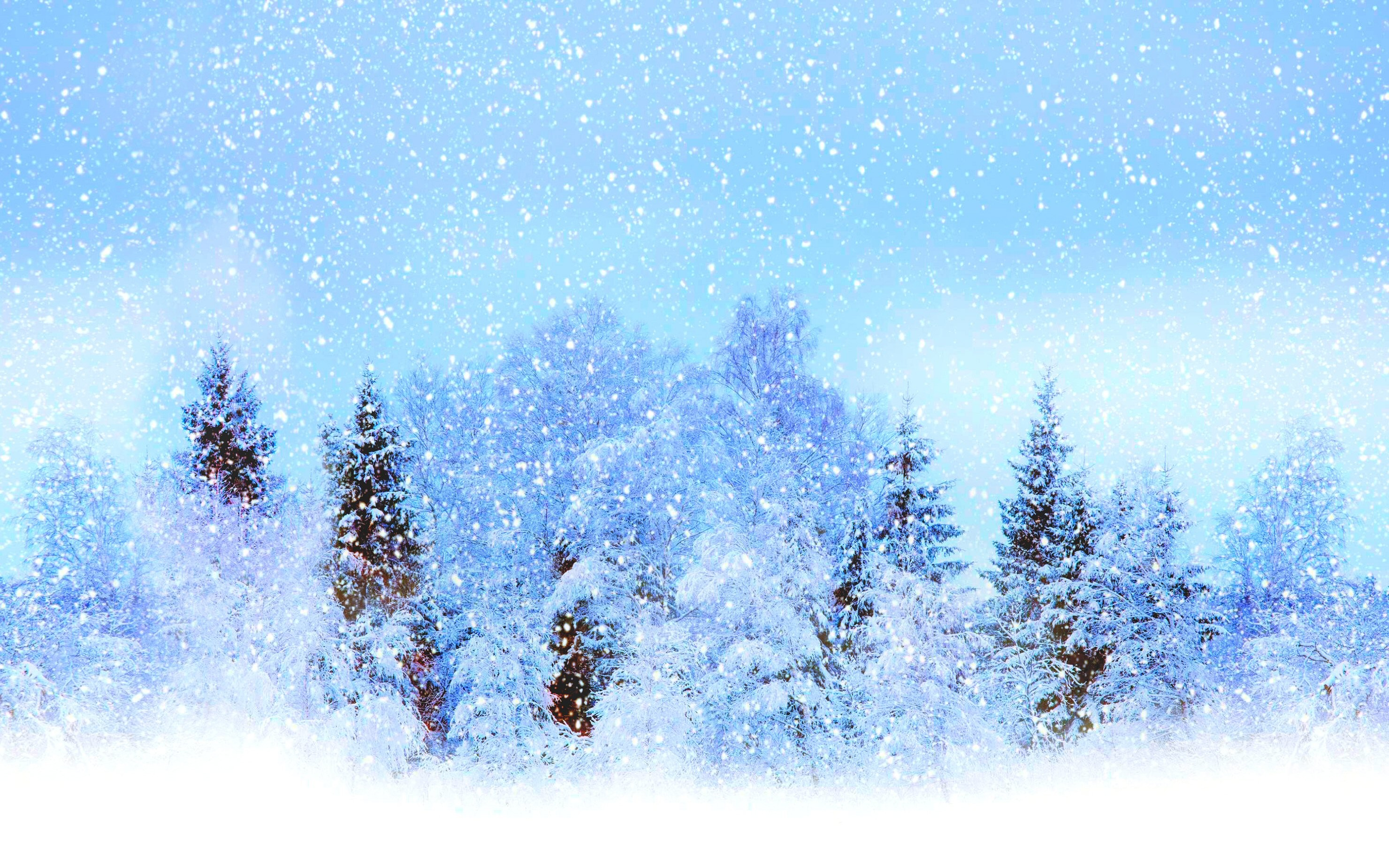 2960x1850 Earth - Winter Nature Tree Blue White Fog Snow Wallpaper