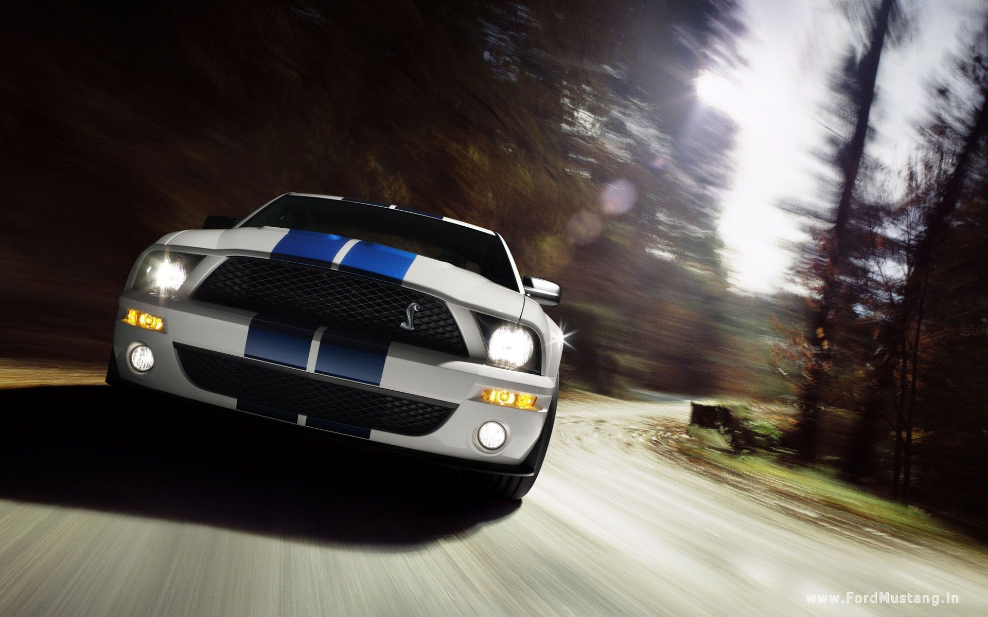 1920x1200 Ford Mustang Wallpapers - Wallpaper Cave
