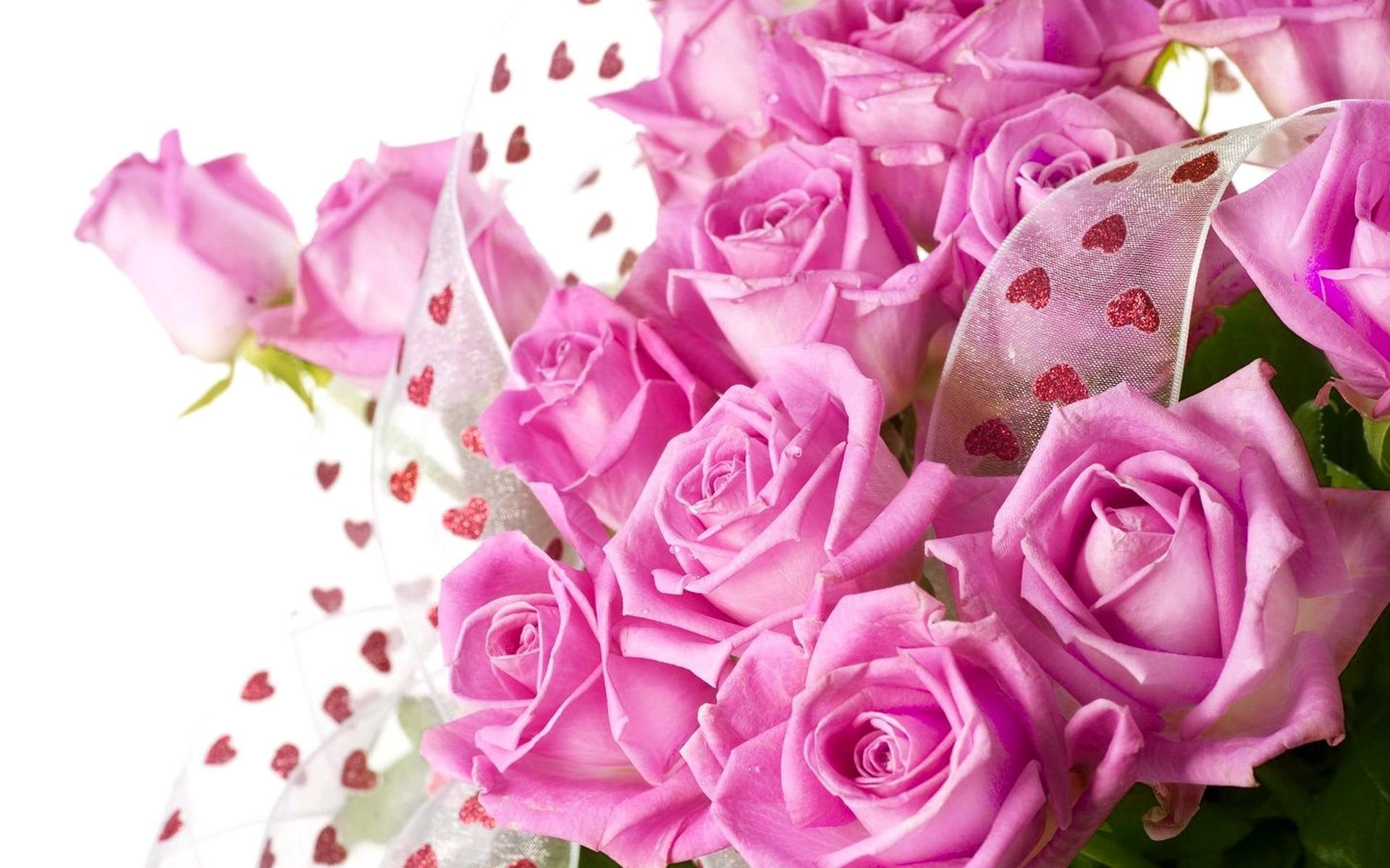 Beautiful Roses Wallpaper 48 Images