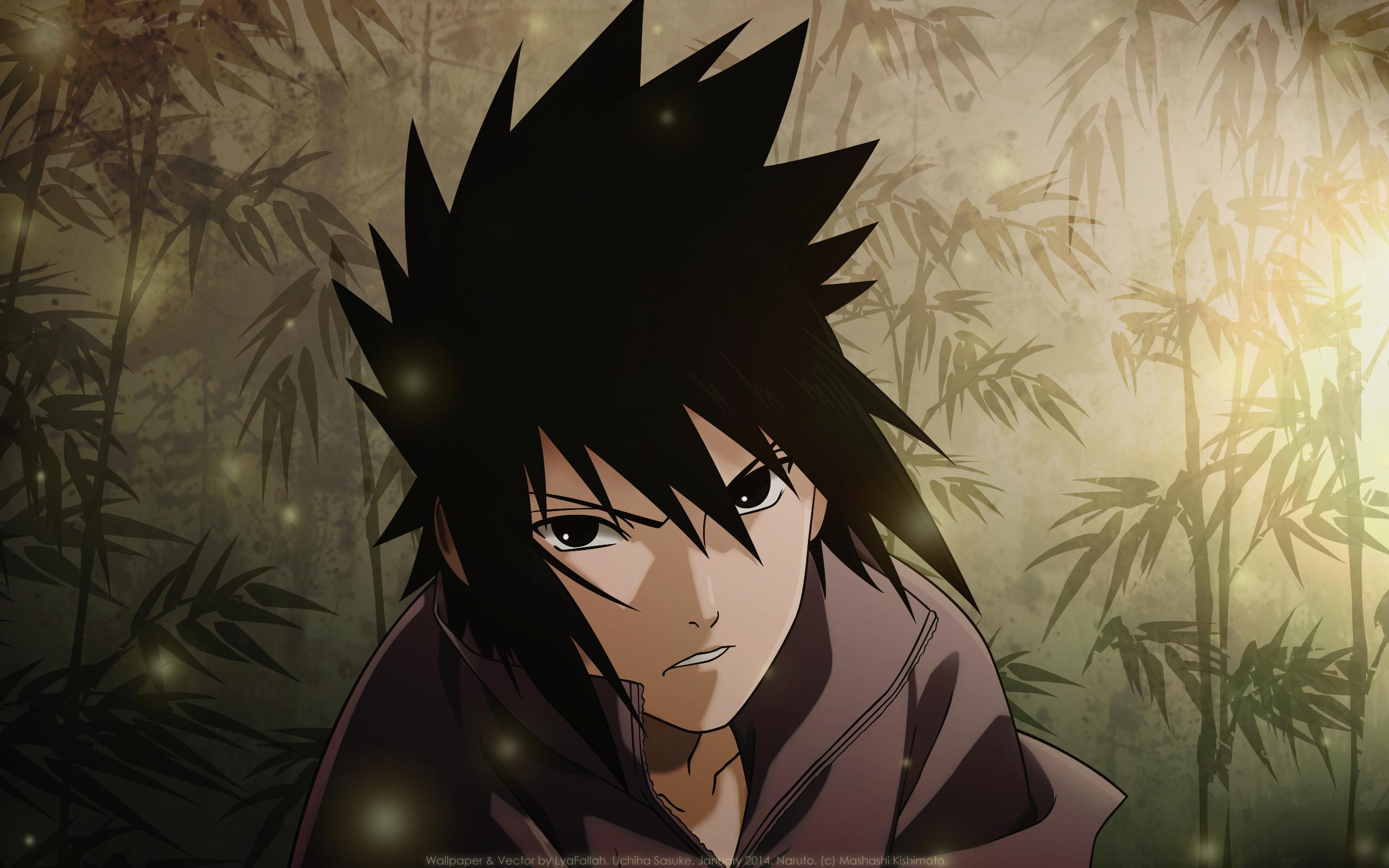 Naruto Shippuden Sasuke Wallpaper (57+ images)