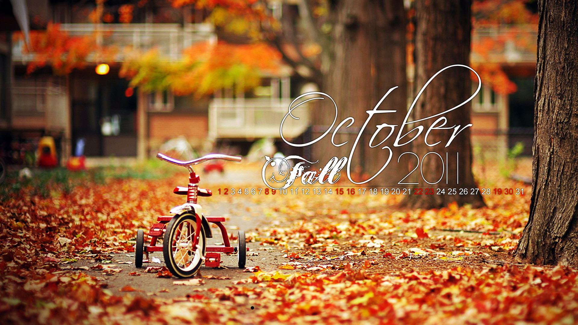 1920x1080 Autumn Fall October Calendar HD Wallpaper