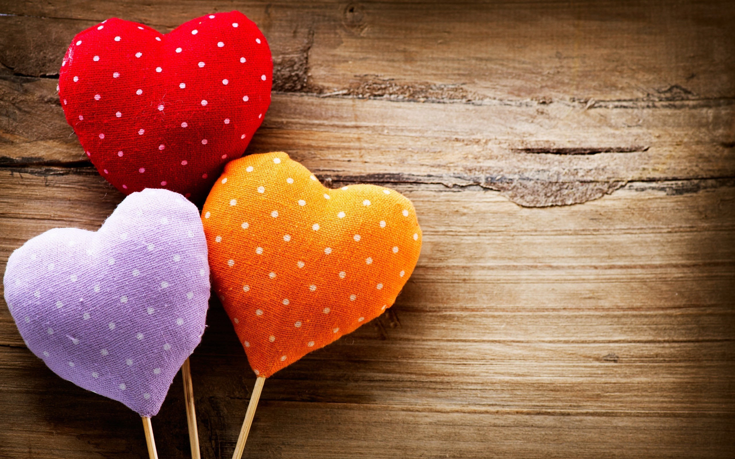 2560x1600 colorful hearts love mood hd wallpaper