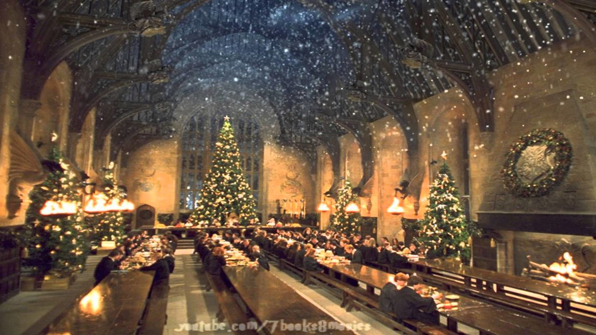 Good Wallpaper Harry Potter Snow - 325939  Graphic_56139.jpg
