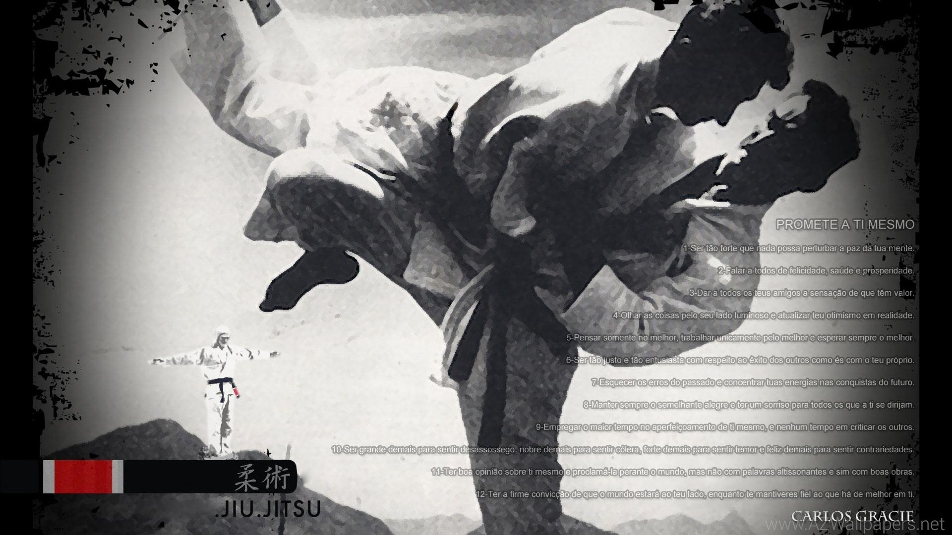 Gracie Jiu Jitsu Wallpaper (78+ Images