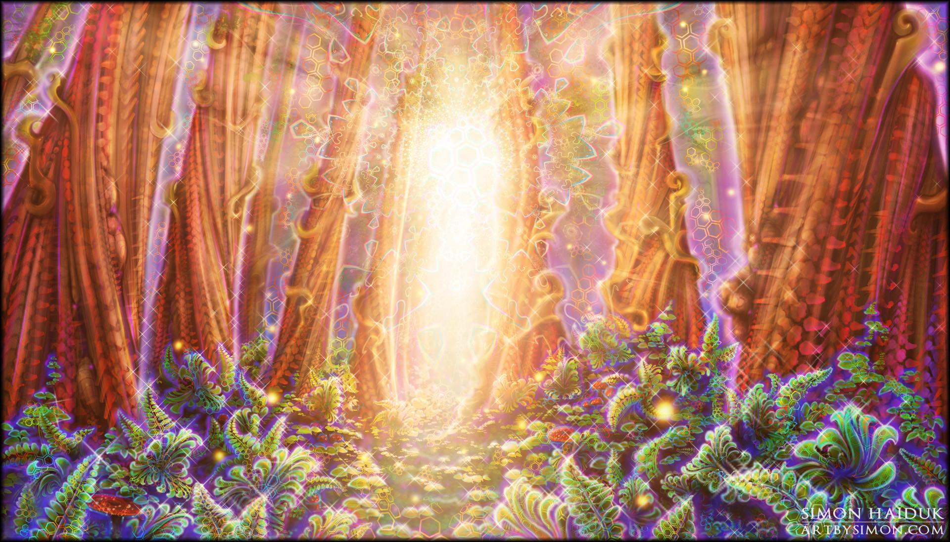 Trippy Mushroom Wallpaper 61 Images