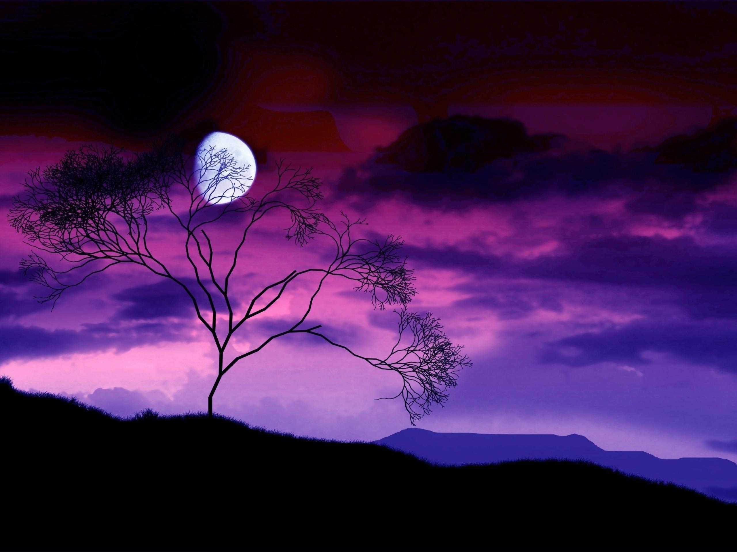 1080x1920 Aurora Night Sky Star Beautiful Space Sea Dark Bw IPhone 8 Wallpaper