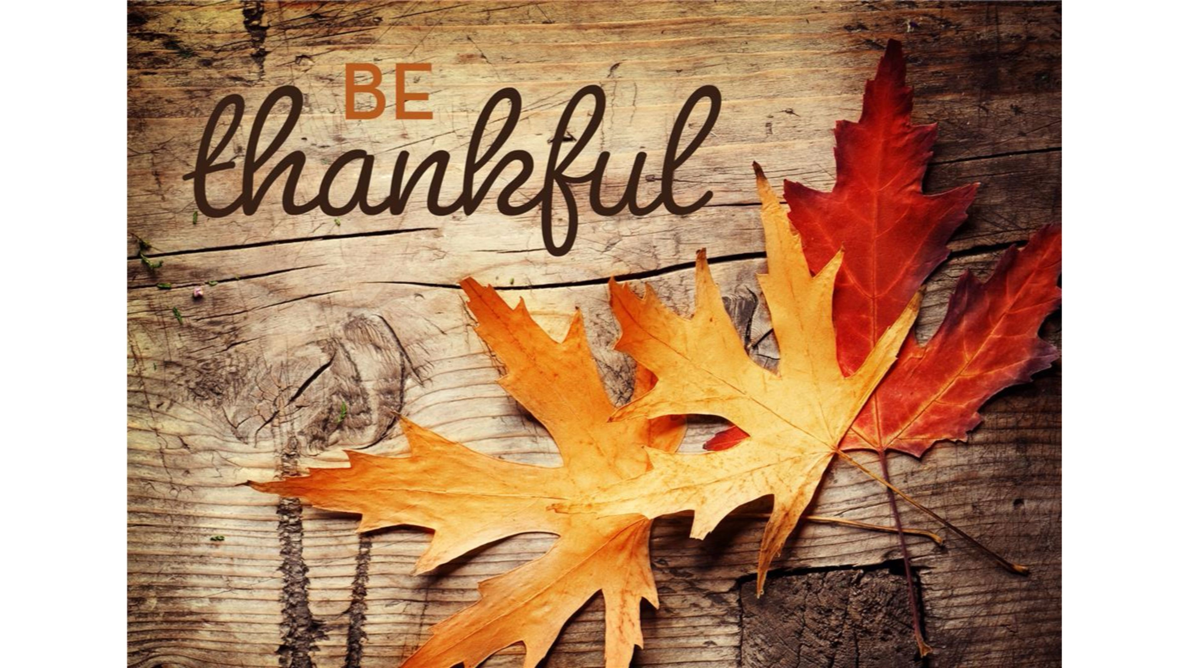 Thanksgiving Wallpaper For Desktop 69 Images