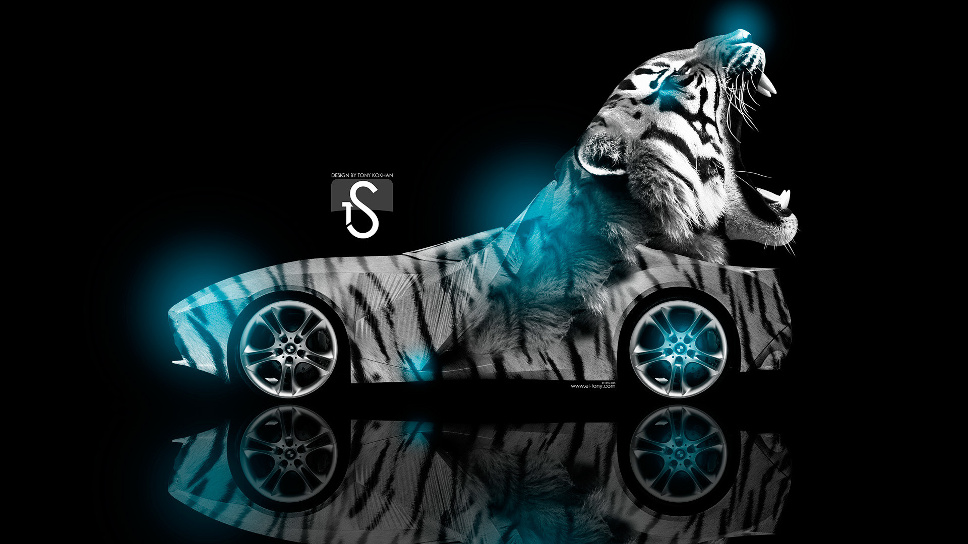 1920x1080 Cool Animal Wallpaper Light Blue Tiger Quotes