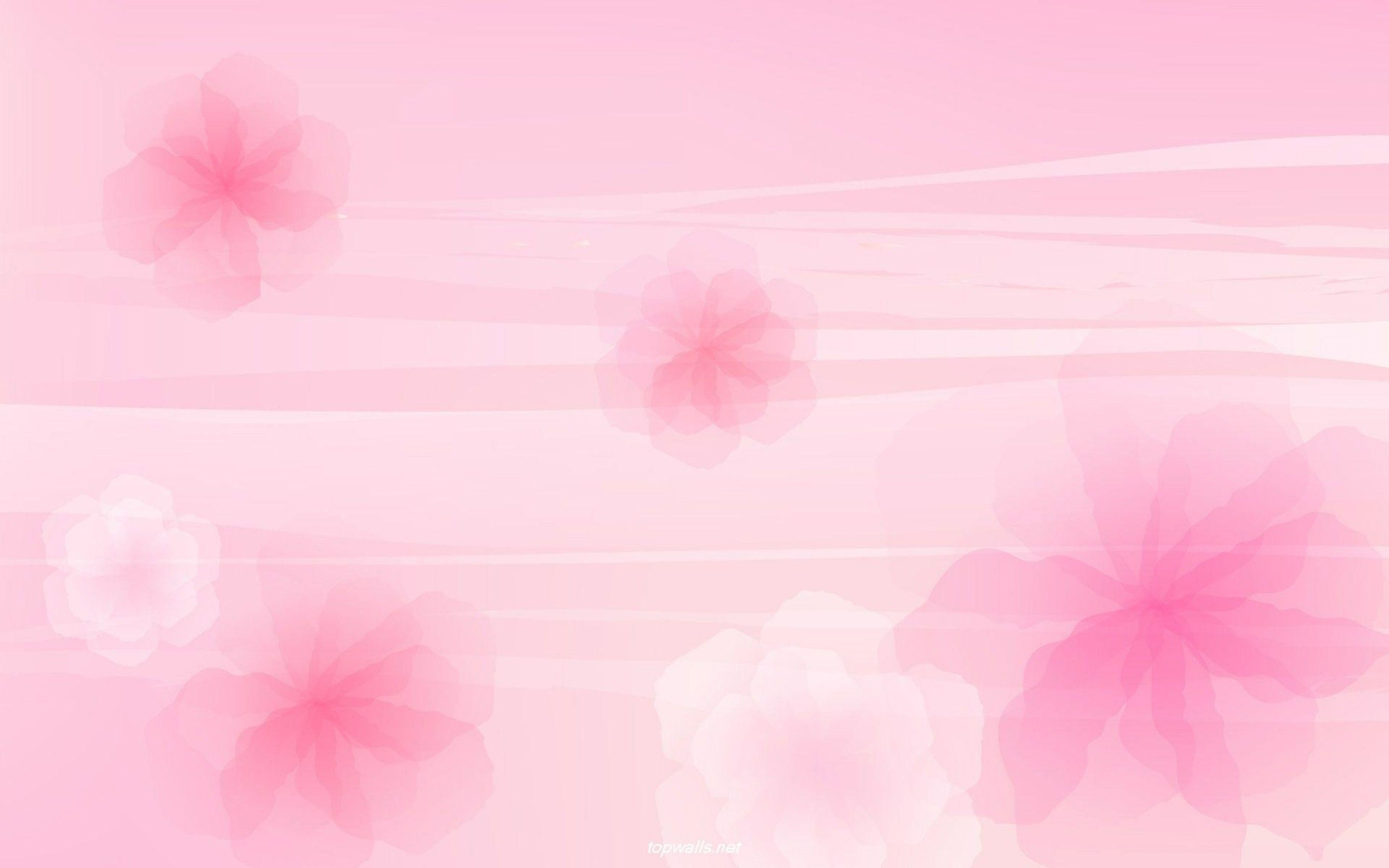 Light Pink Flower Wallpaper (54  images) for Light Pink Flower Wallpaper  53kxo