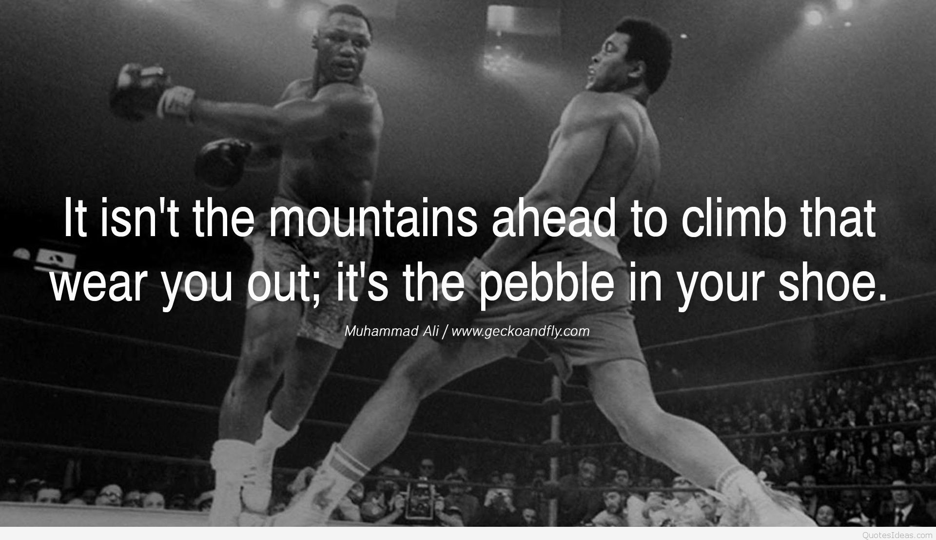 Muhammad Ali Quotes Wallpaper (79+ images)