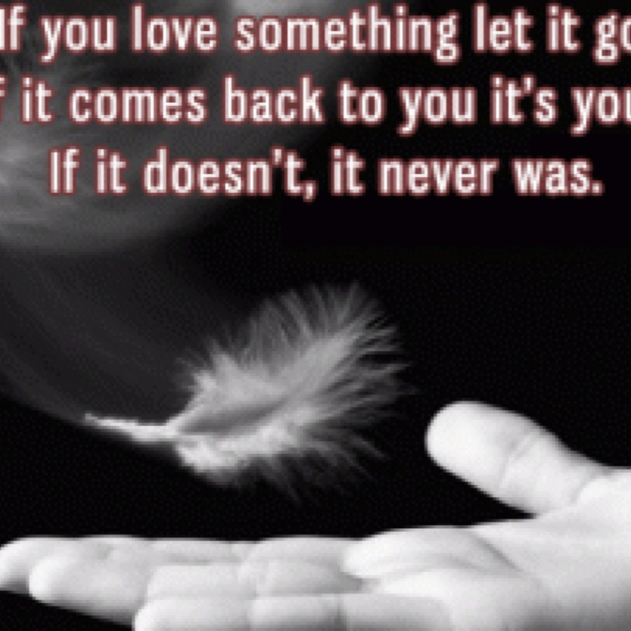 2560x1600 Free Cute Love Quote Wallpapers A Long