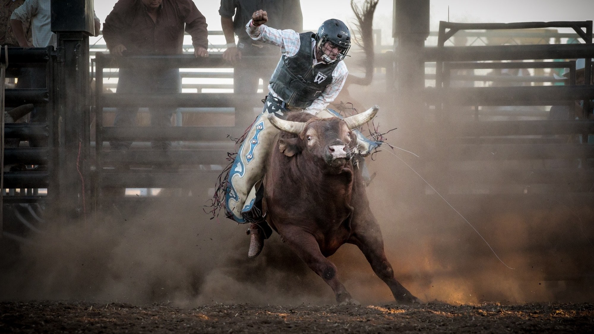 2000x1125 BULL RIDING bullrider cowboy western cow extreme bull rodeo wallpaper |   | 823824 | WallpaperUP