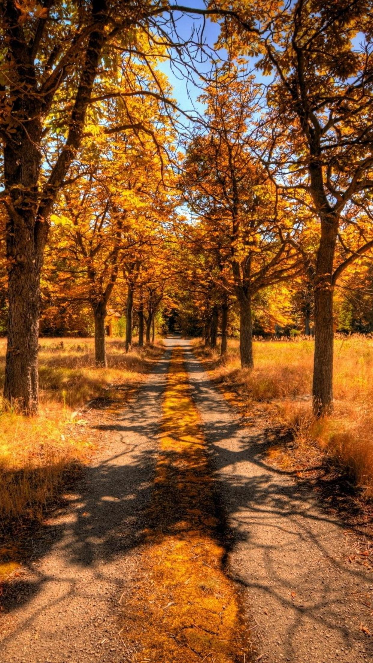 iphone 6 autumn wallpaper 87 images